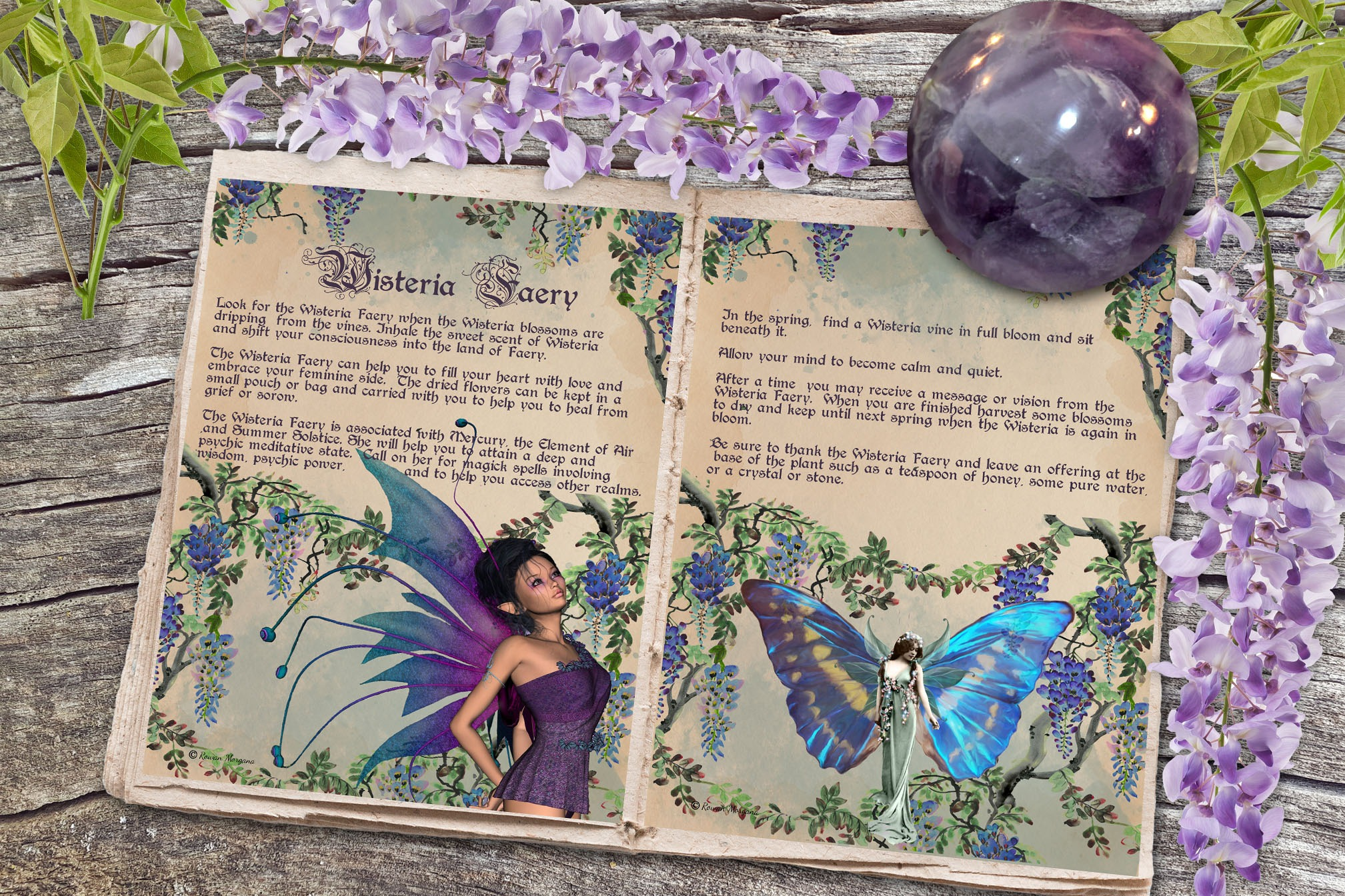 WISTERIA FAERIE   Realm of the Fey