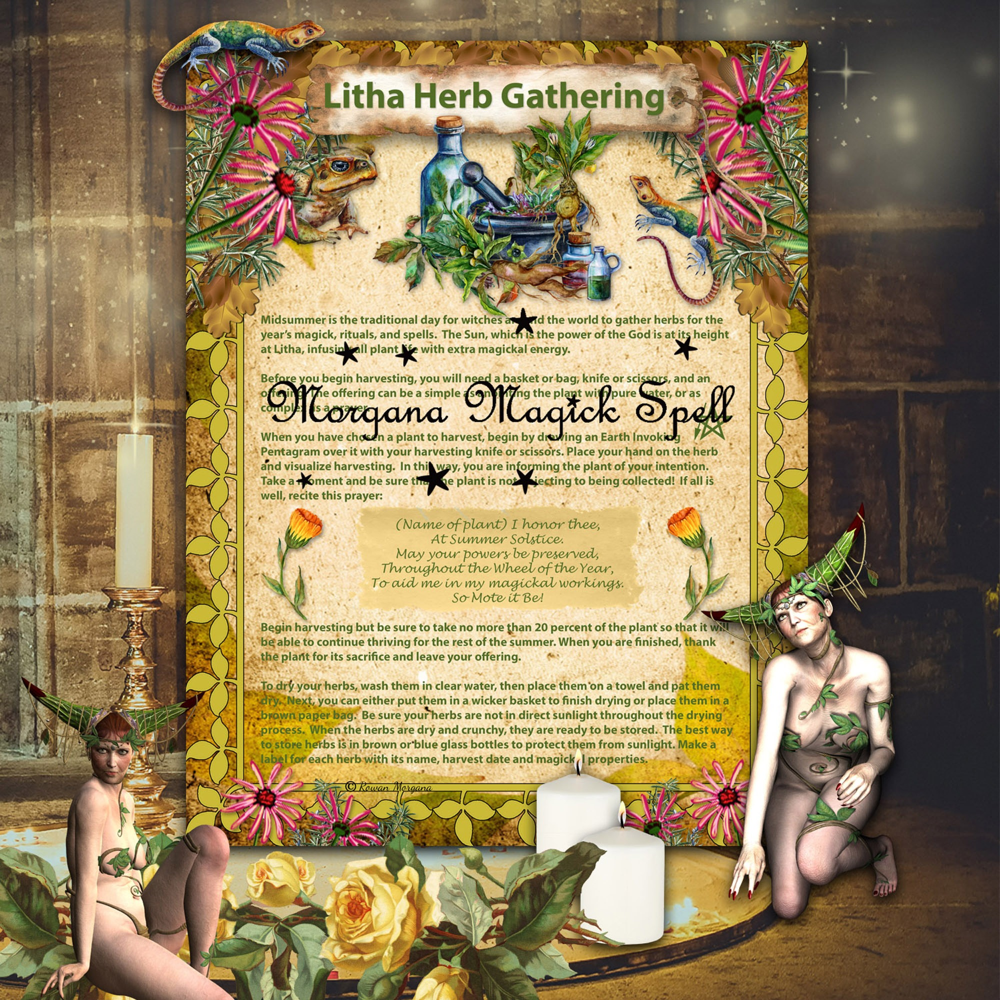 LITHA HERB GATHERING