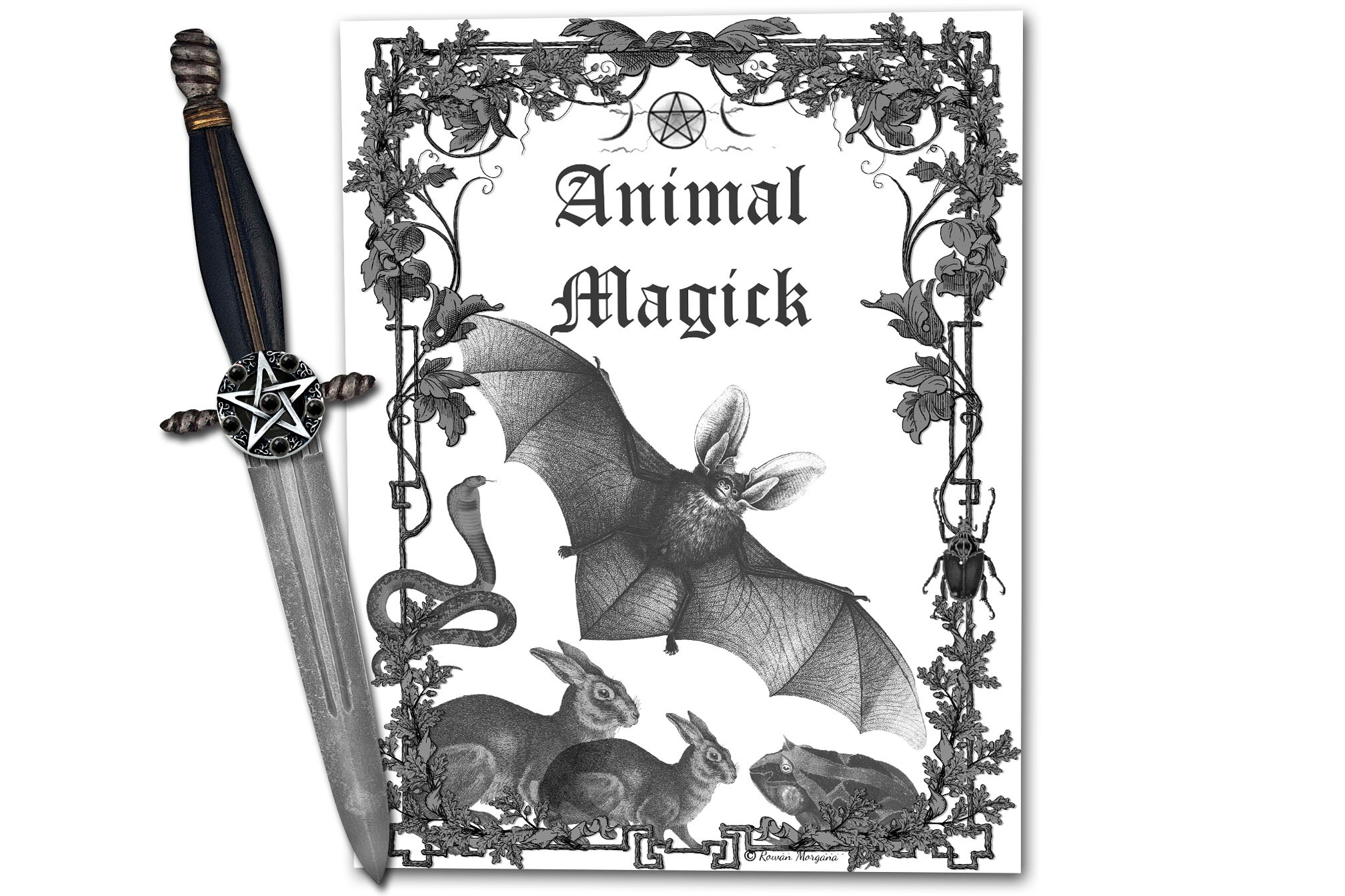ANIMAL MAGICK Book of Shadows Title Page