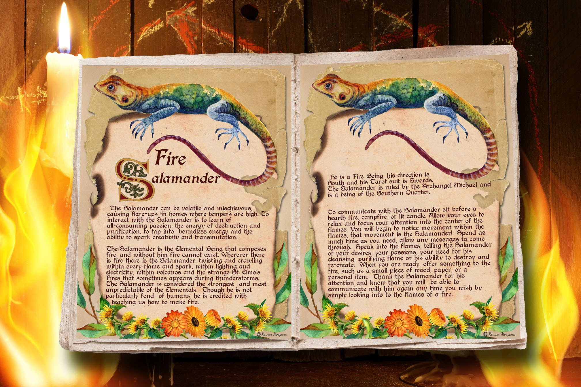 SALAMANDER the FIRE ELEMENTAL Realm of the Fey