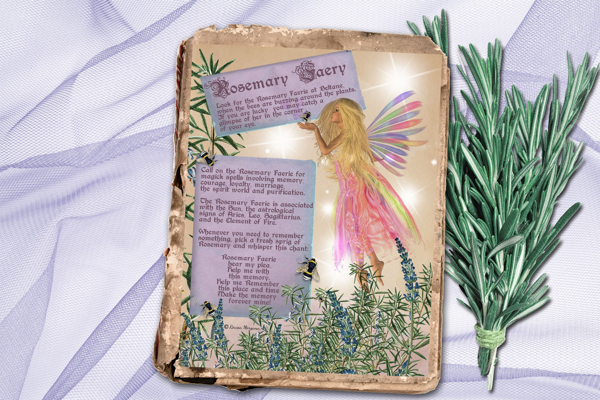 ROSEMARY FAERY   Realm of the Fey