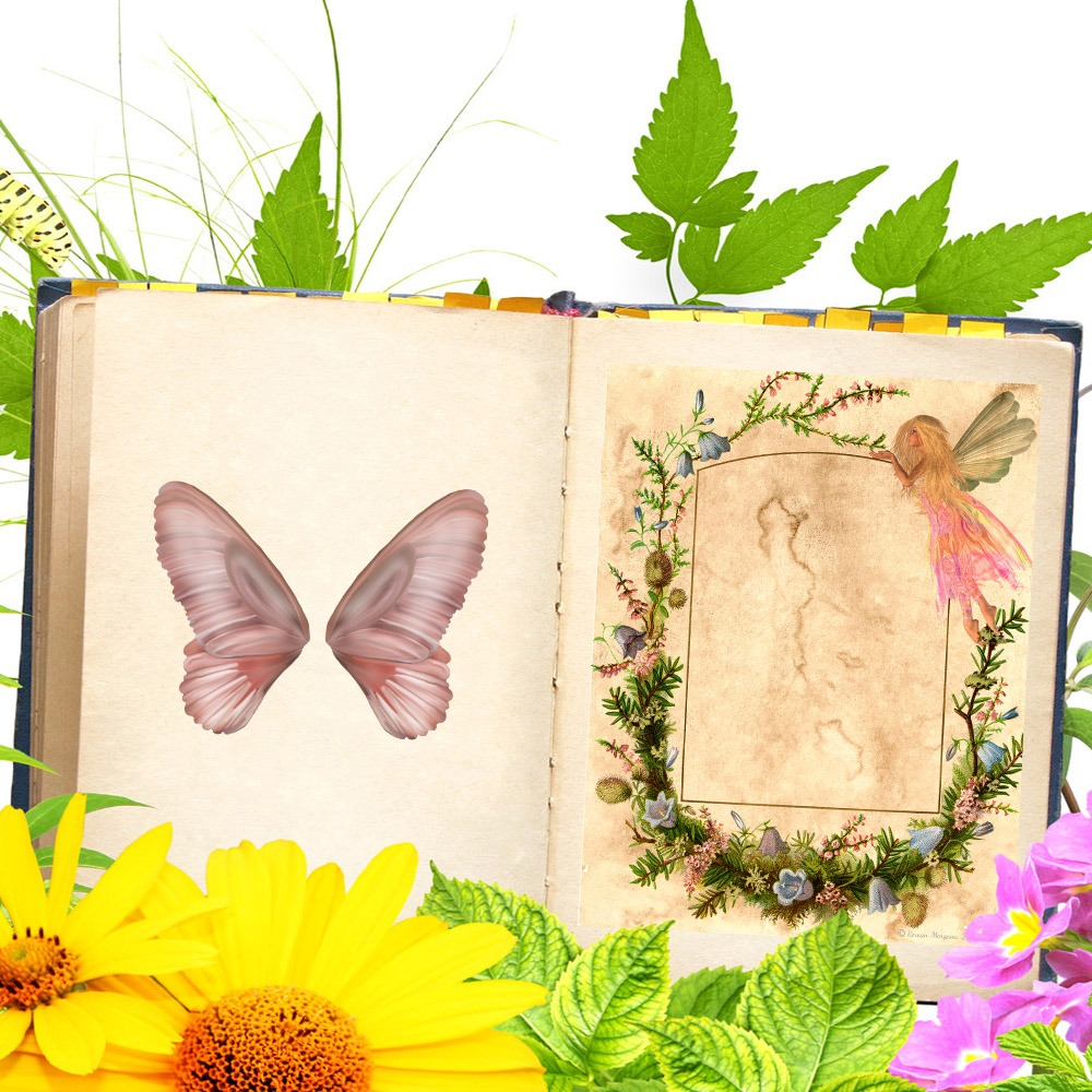 FAERIE  Blank Page