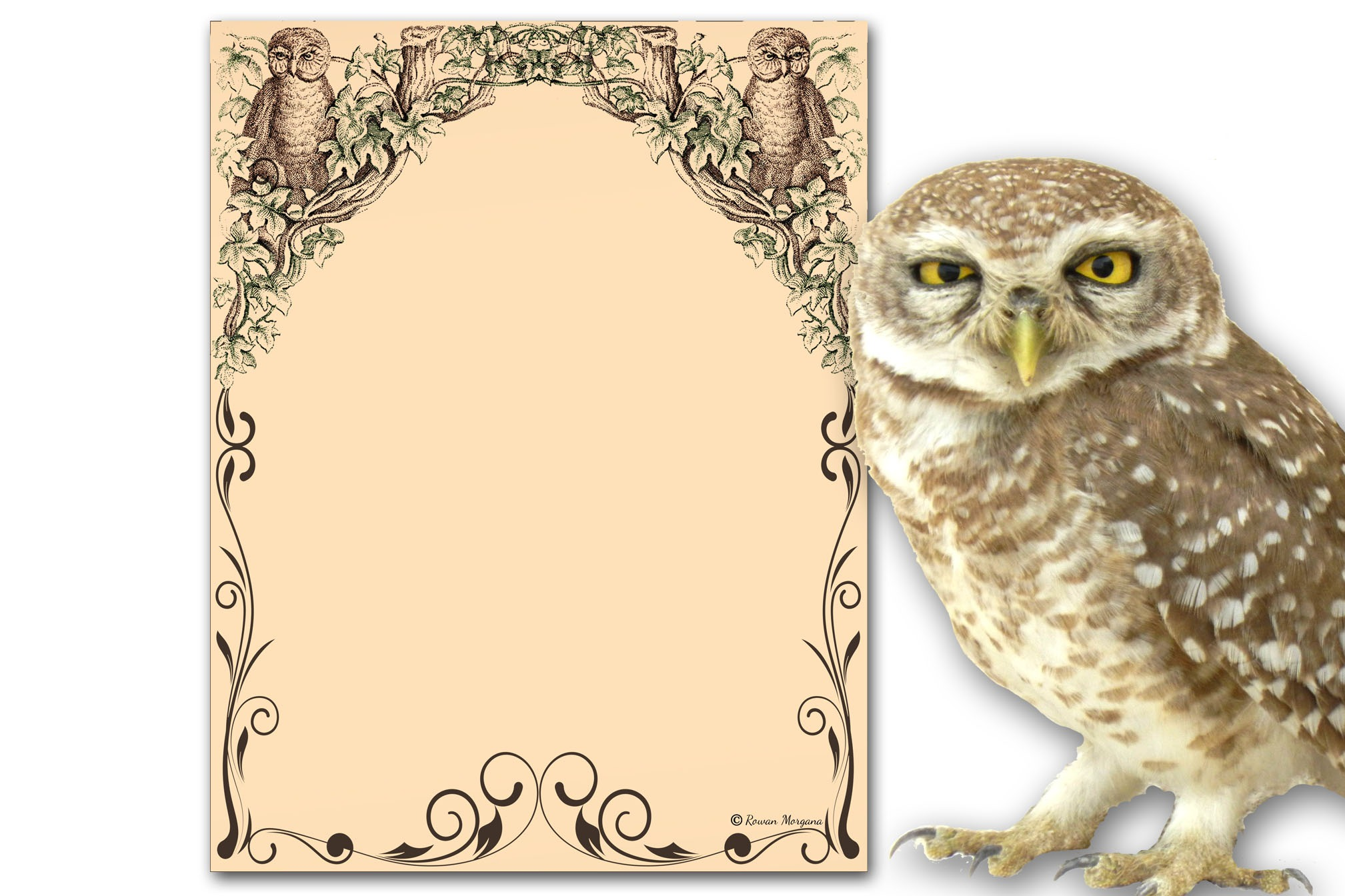 OWLS Page for Book of Shadows
