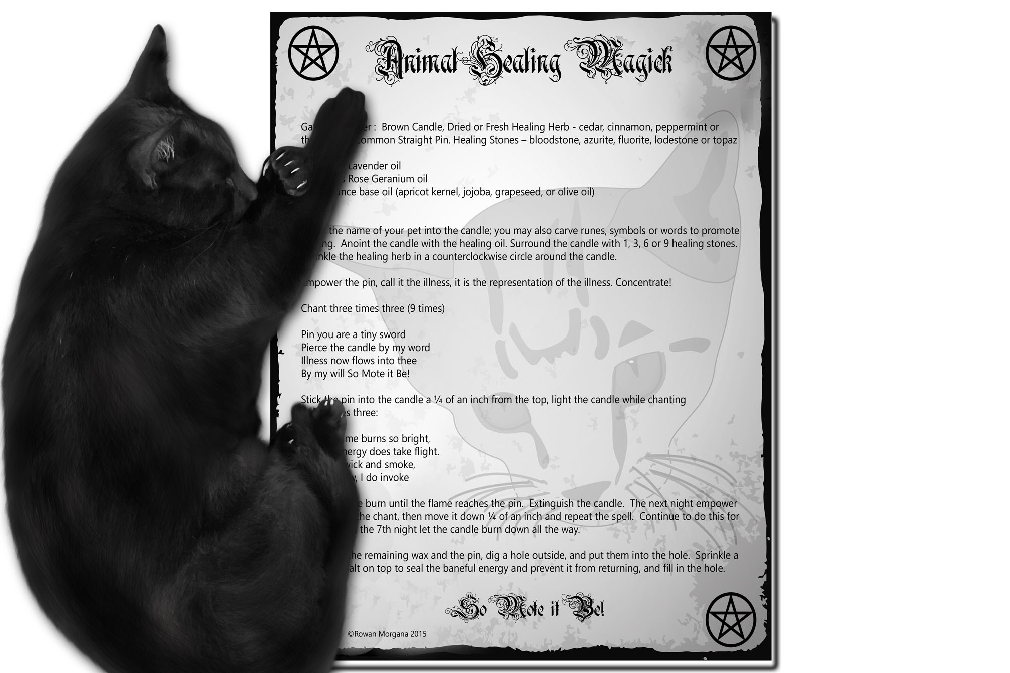 ANIMAL HEALING MAGICK