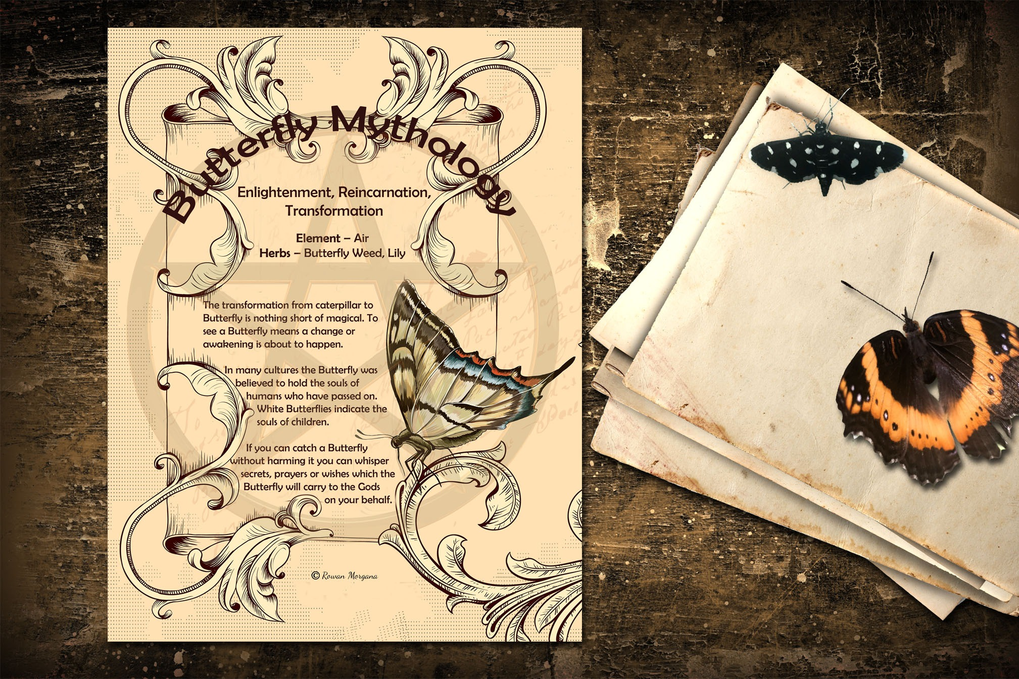 BUTTERFLY      Myths & Correspondences