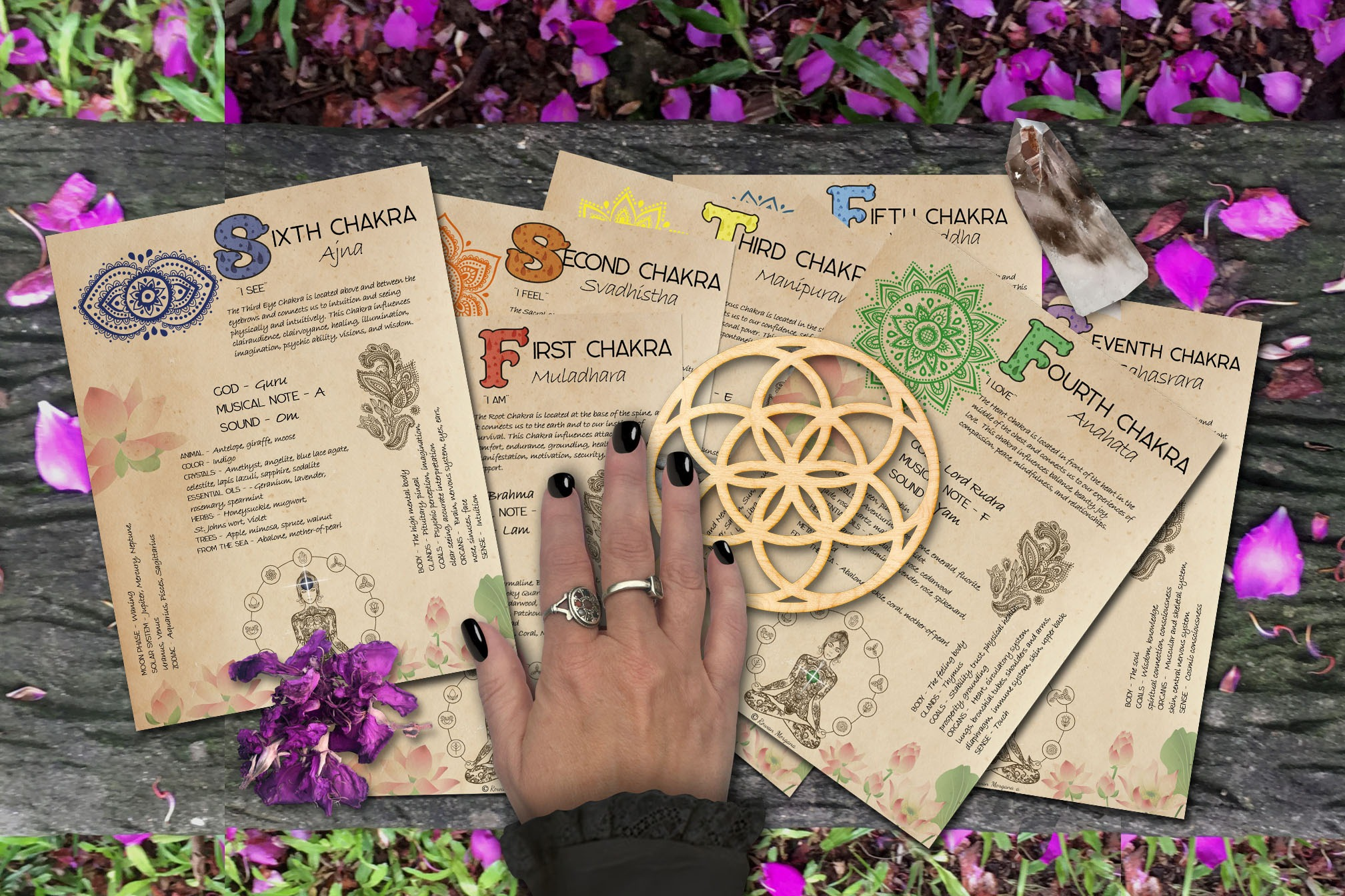 The CHAKRAS    7 PAGES