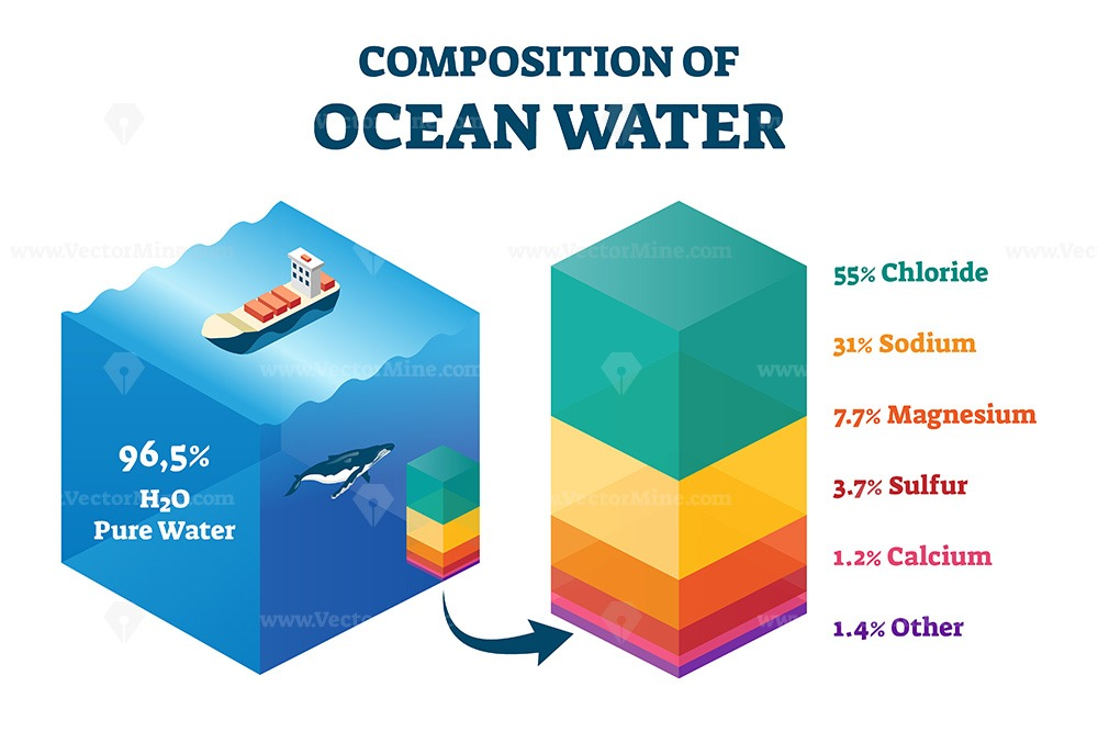 Composition of ocean water vector illustration