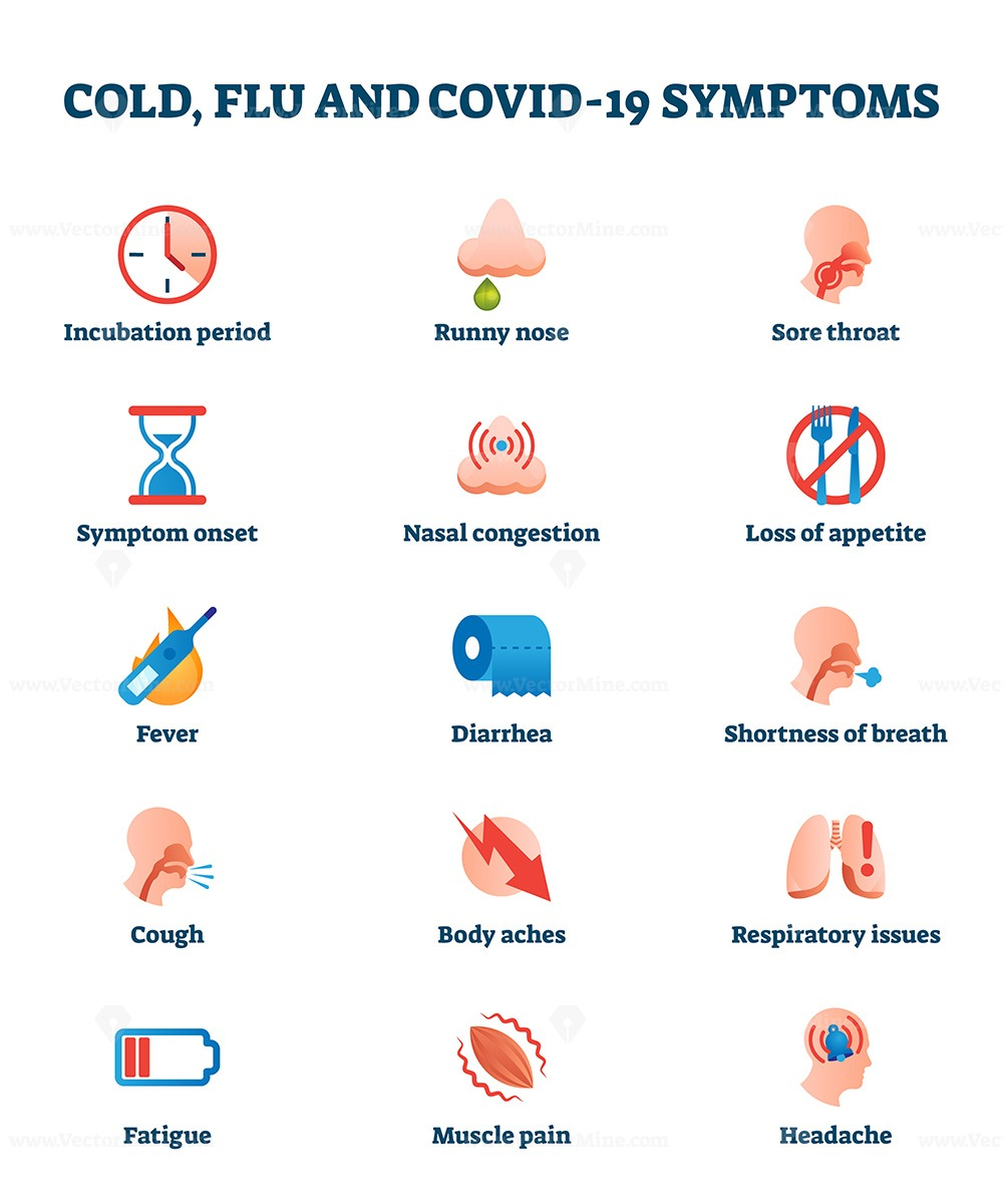 Free Cold Flu And Covid 19 Disease Symptoms Collection List Vector Illustration Vectormine