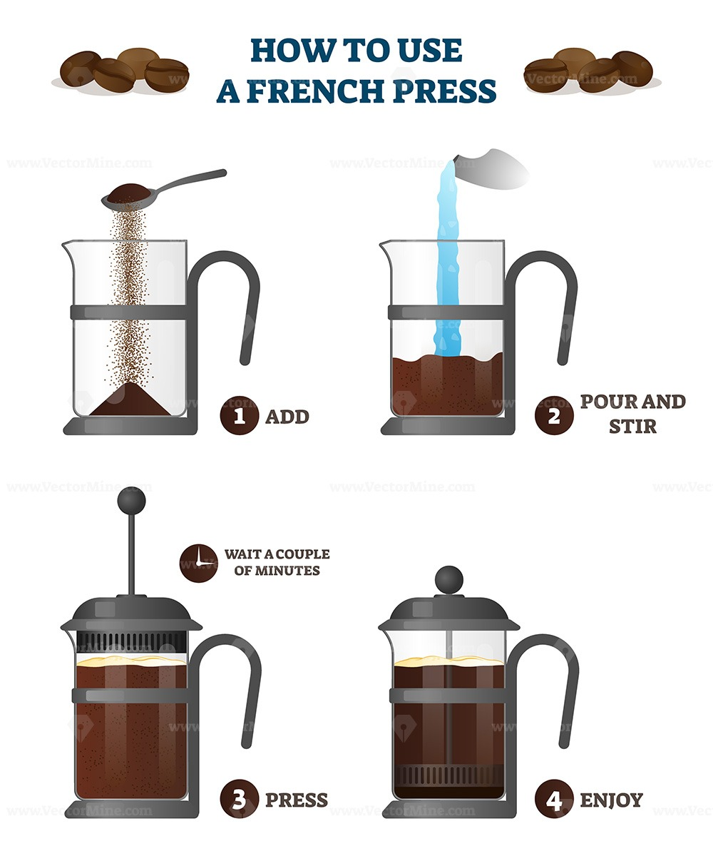 How to use a french press coffee explanation educational vector illustration