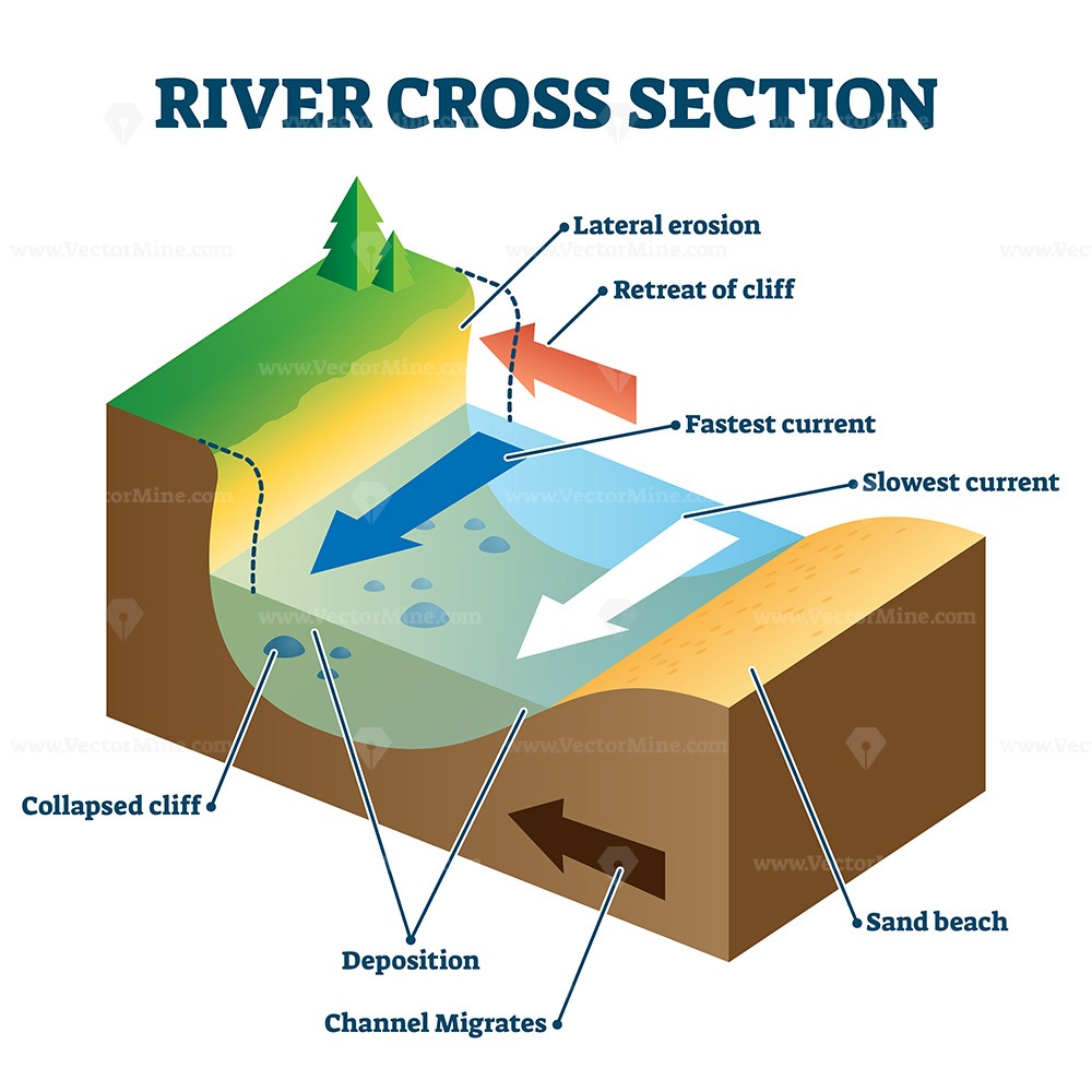 River cross section with labeled educational structure vector illustration