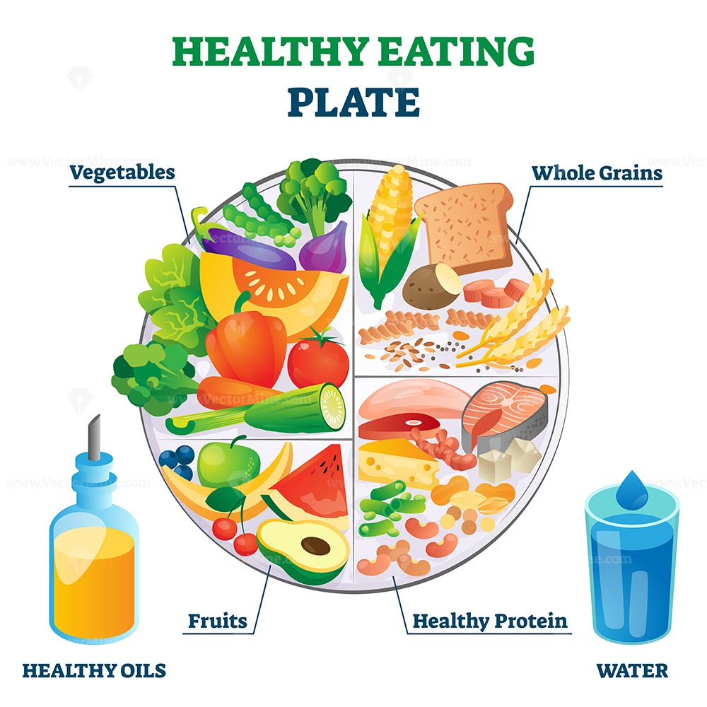 Healthy eating plate vector illustration