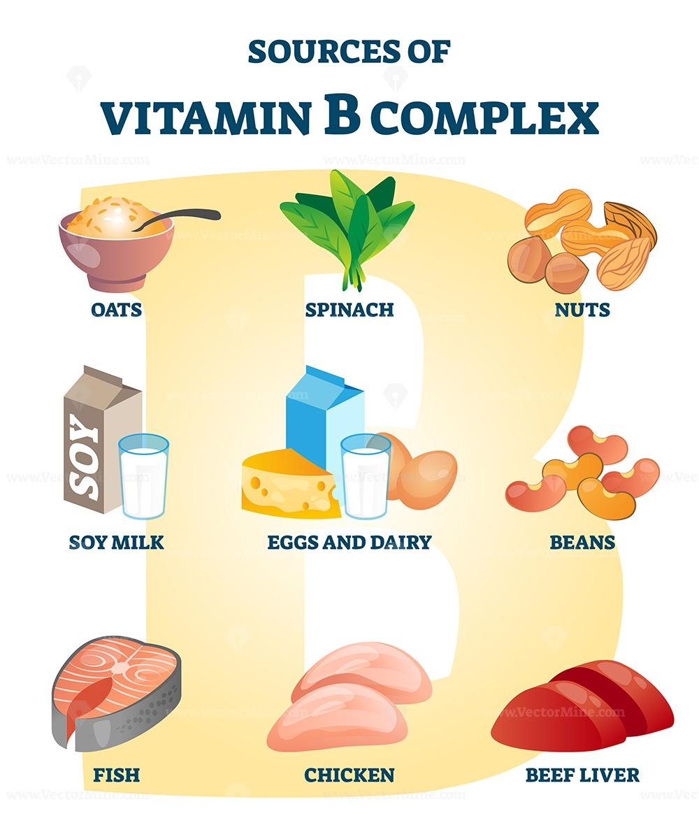 Source of vitamin B complex with labeled healthy food nutrient example list