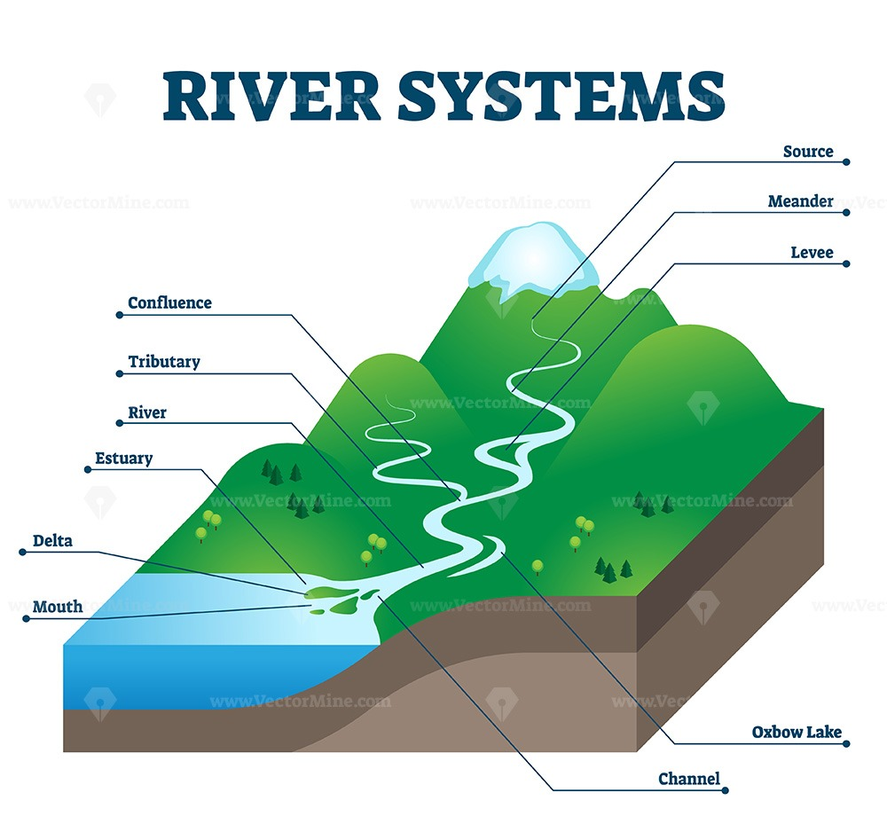 River systems and drainage basin educational structure vector illustration