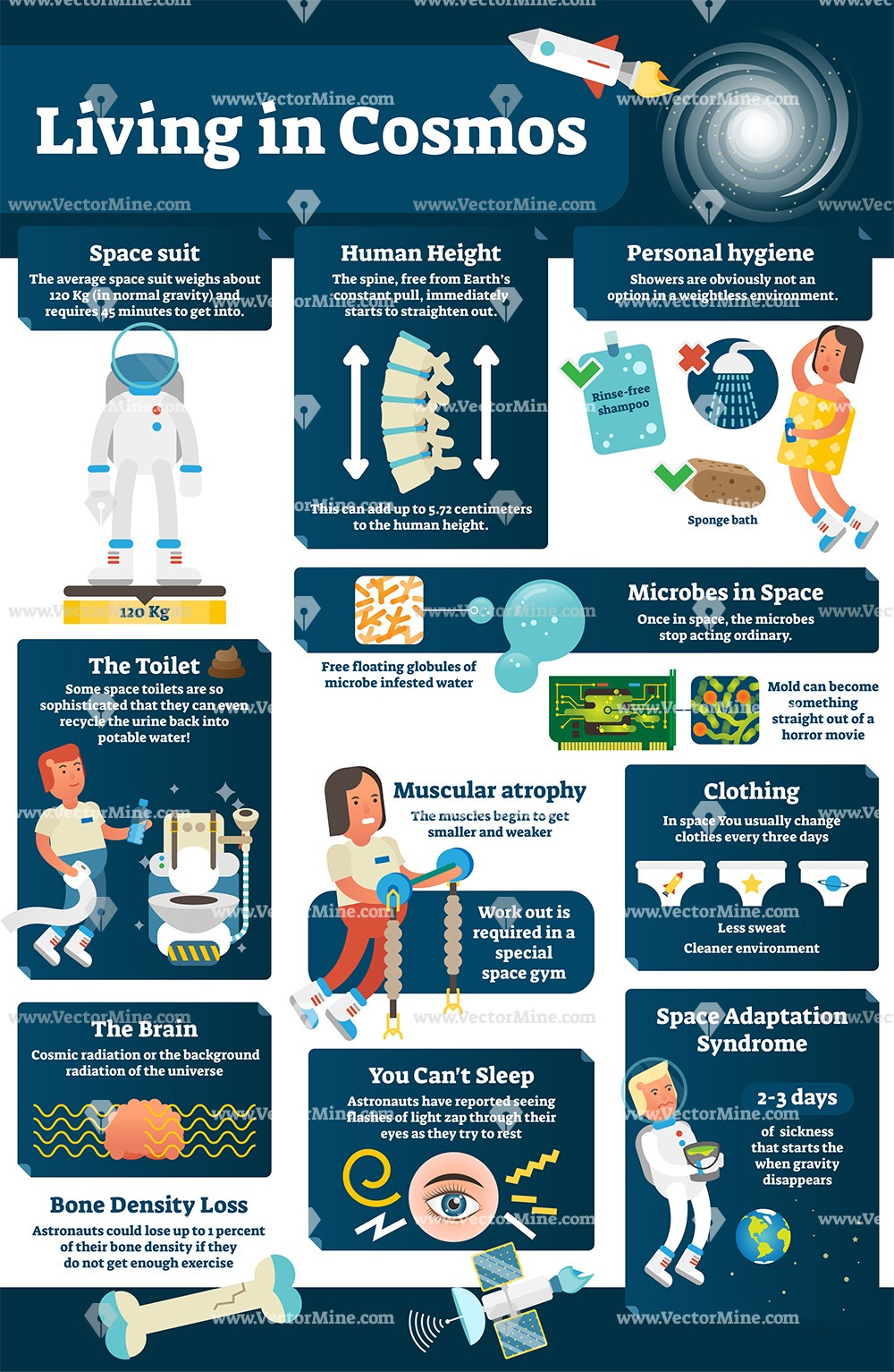 Living in cosmos illustrated infographic