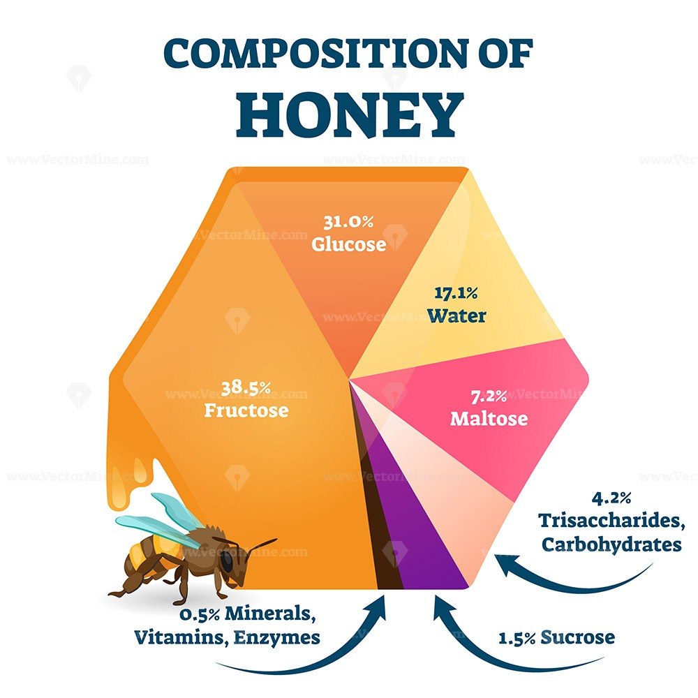 Composition of bee honey vector illustration
