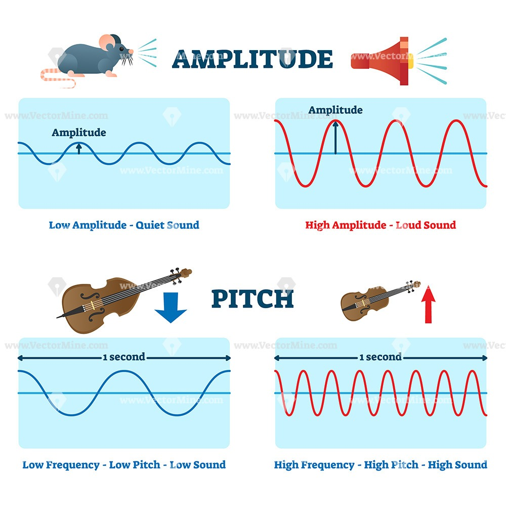 Amplitude and pitch vector illustration