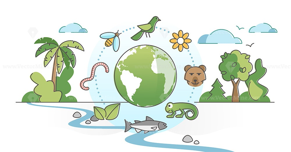Biodiversity as species variety and difference protection outline concept
