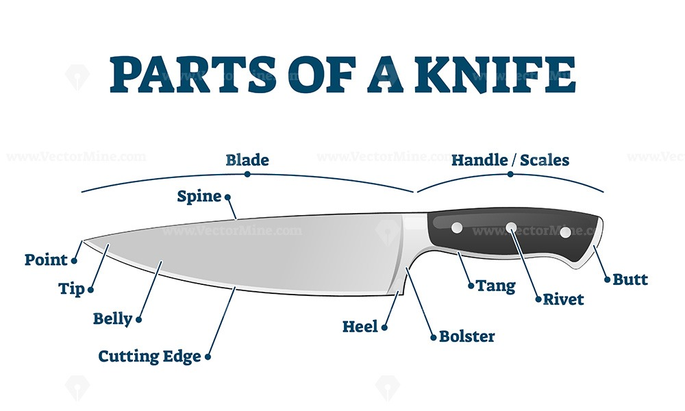 Parts of kitchen knife with labeled structure description vector illustration