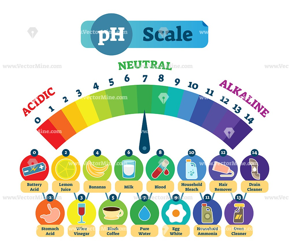 PH acid scale measurement vector illustration diagram