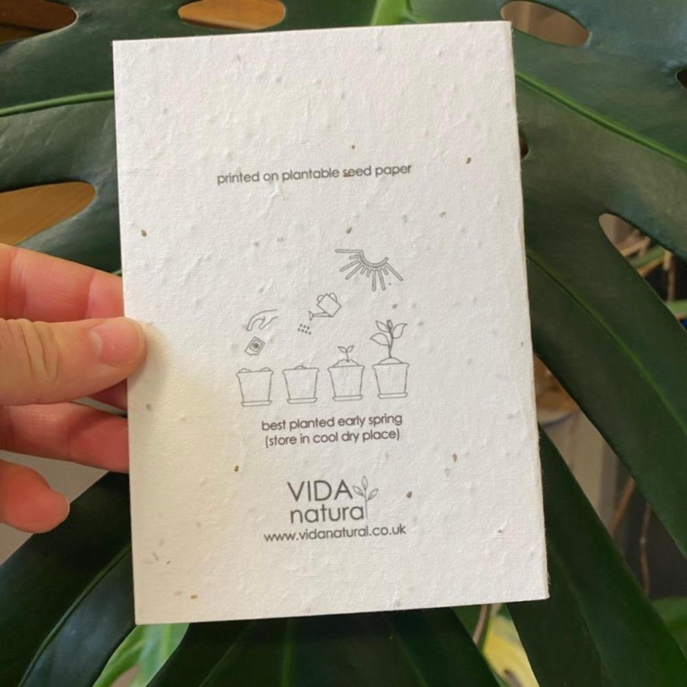 With Sympathy Plantable Card
