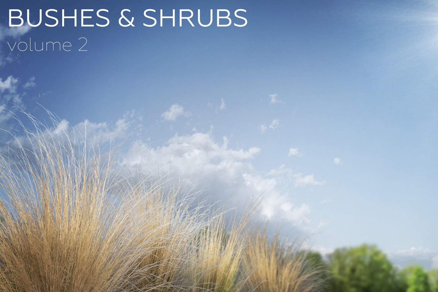 BUSHES & SHRUBS - Volume 2