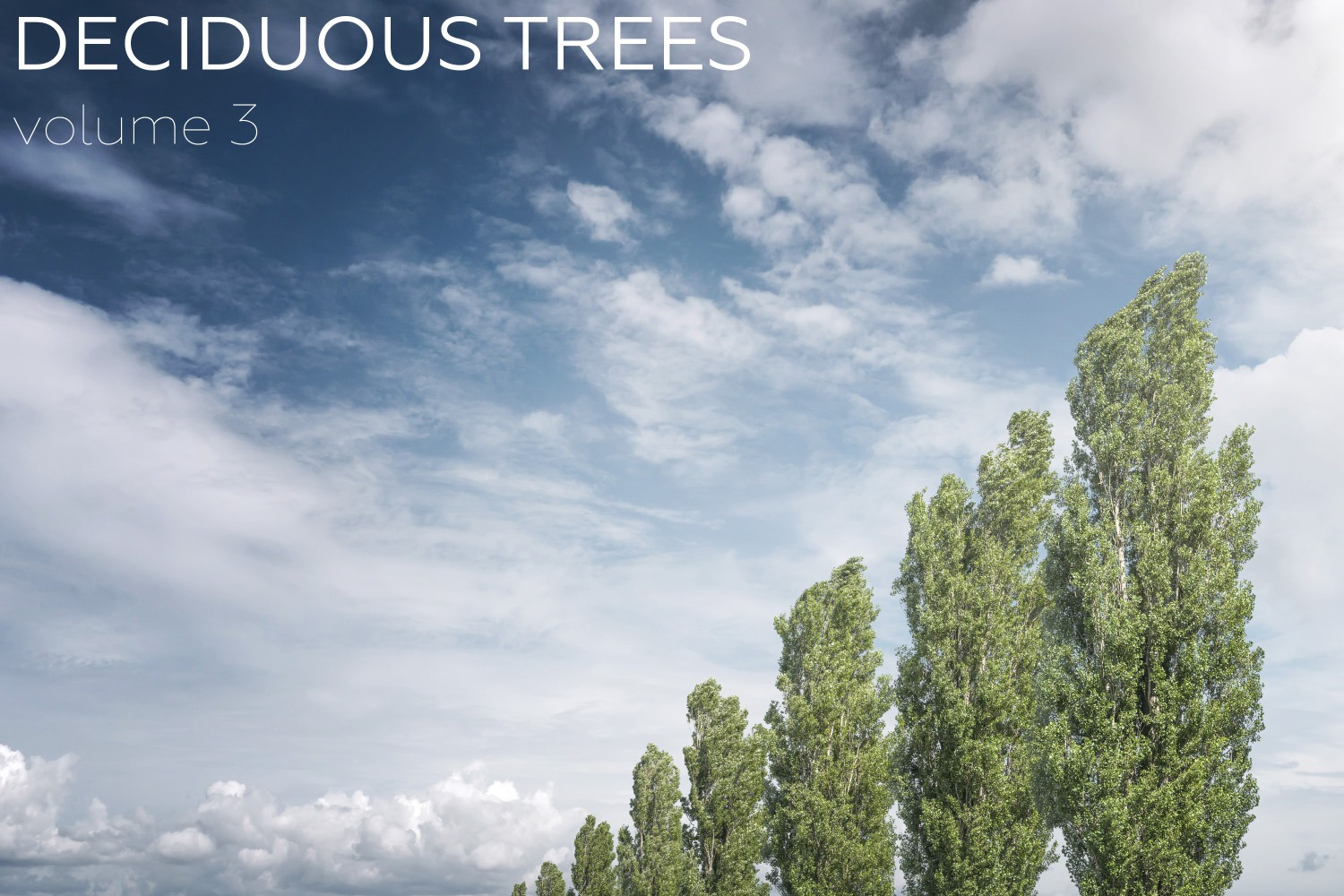 DECIDUOUS TREES Volume 3