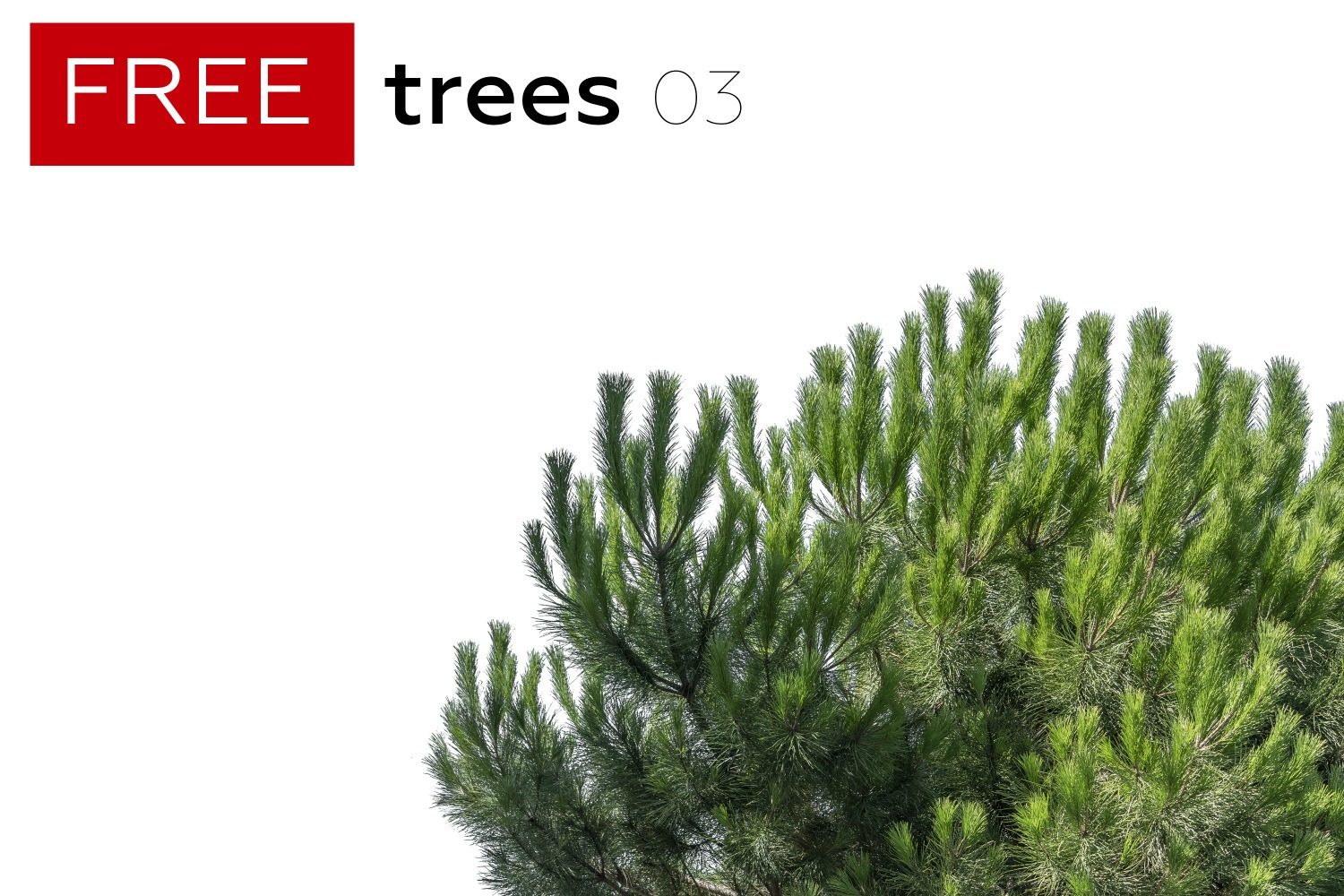 FREE STUFF - 4 Free Trees - Volume 3