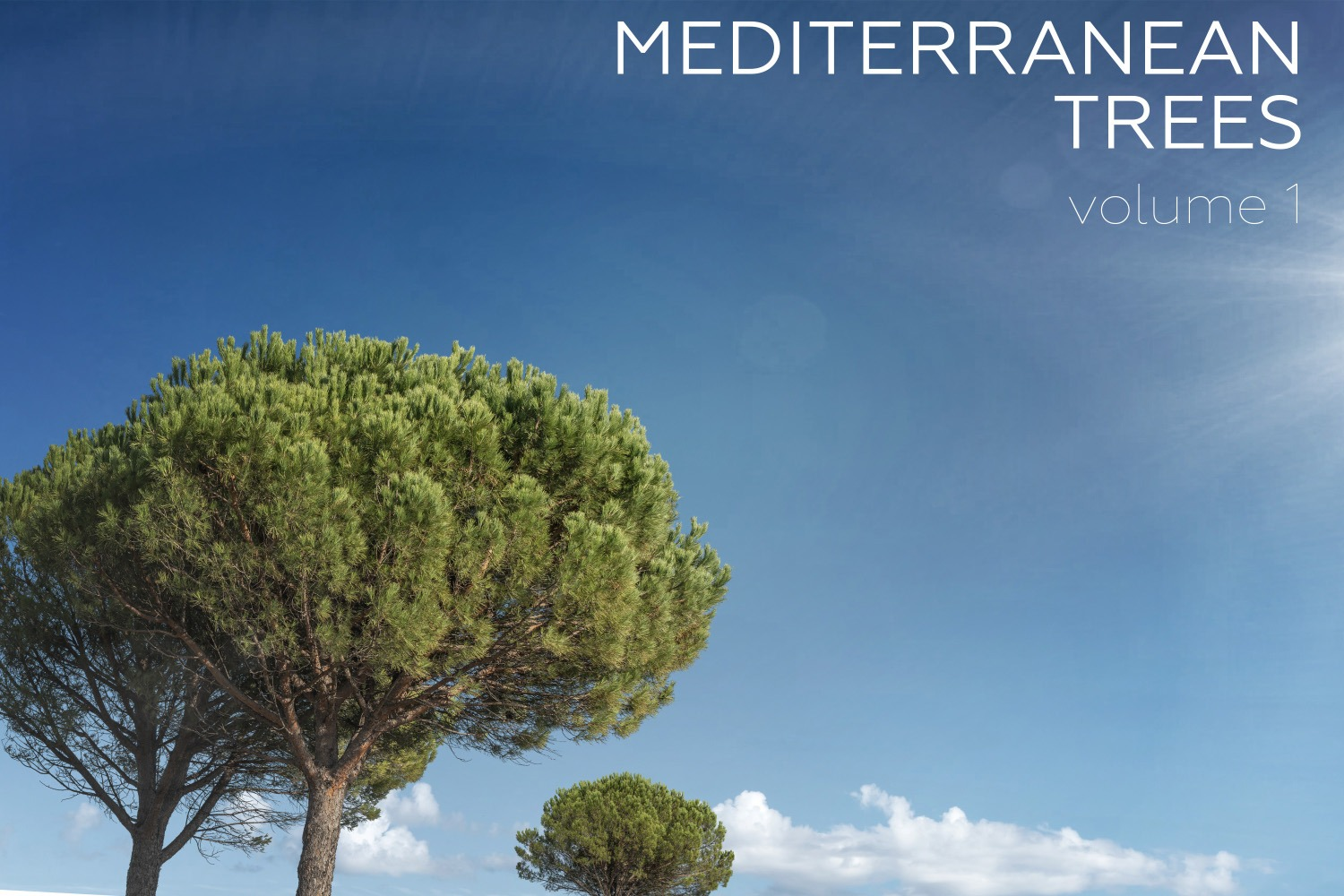 MEDITERRANEAN TREES Volume 01