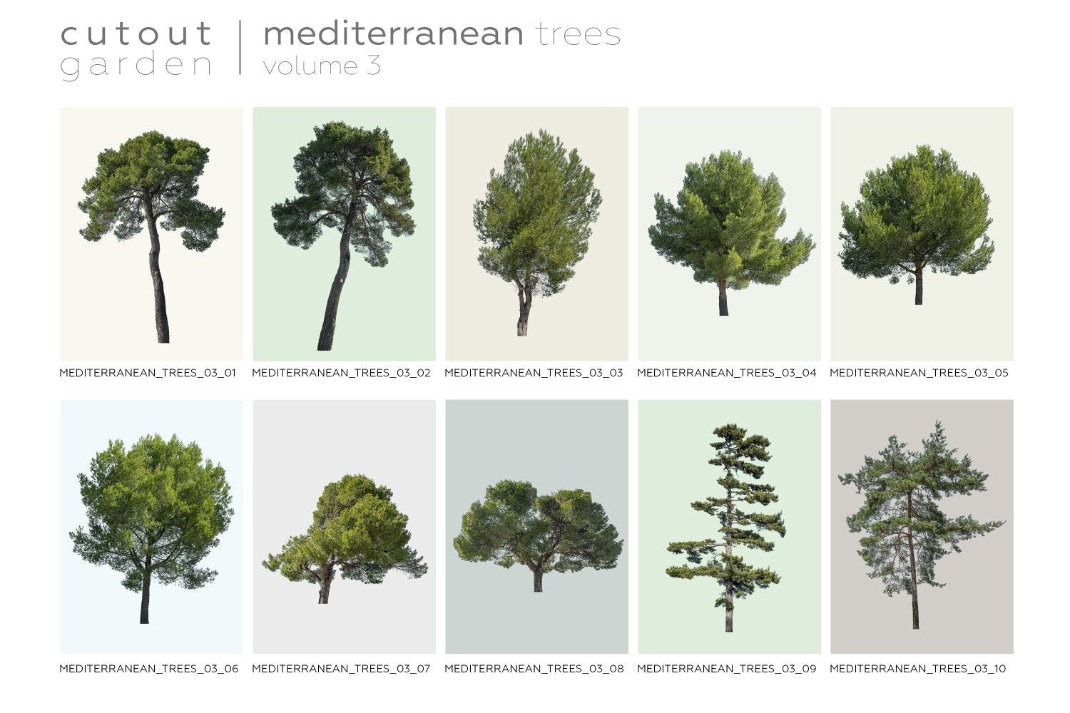 MEDITERRANEAN TREES Volume 03