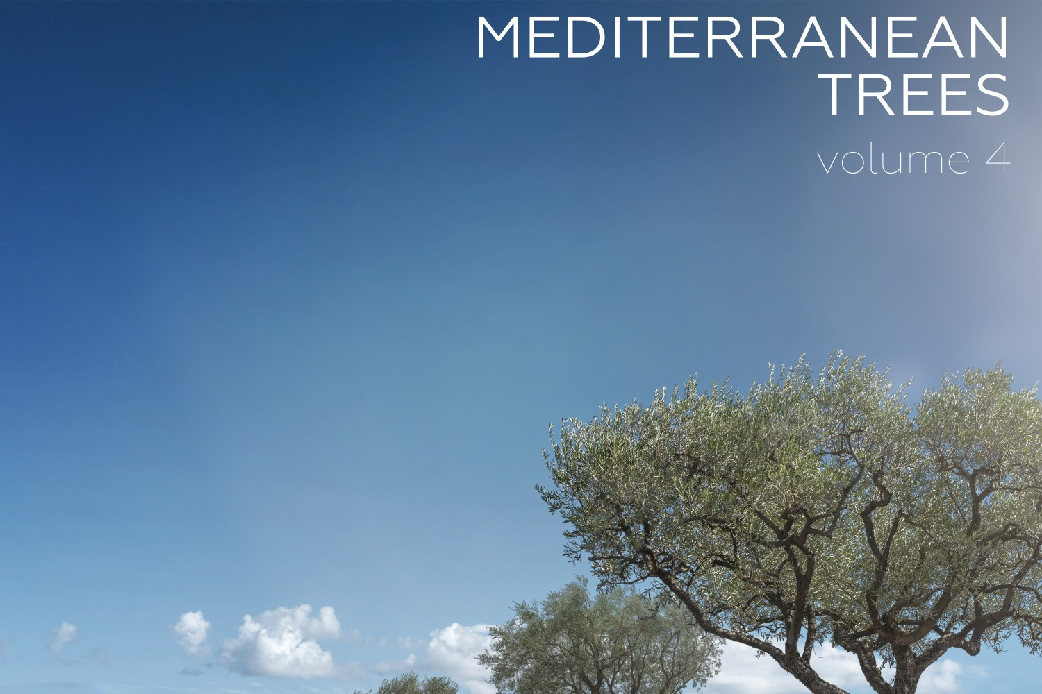 MEDITERRANEAN TREES Volume 04