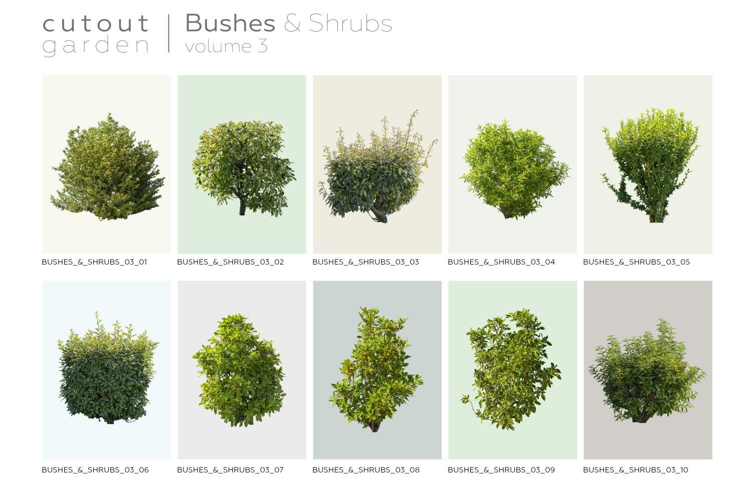 BUSHES & SHRUBS - Volume 3