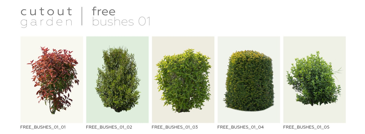 FREE STUFF - 5 Free Bushes - Volume 1