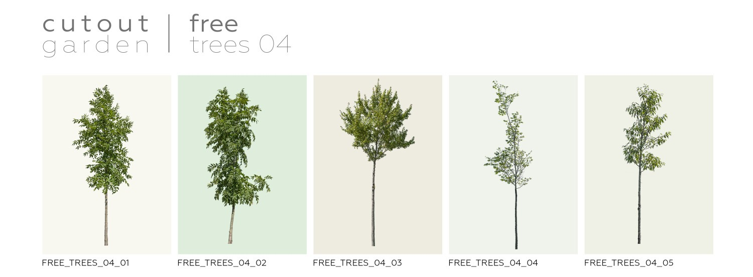 FREE STUFF - 5 Free Trees - Volume 4