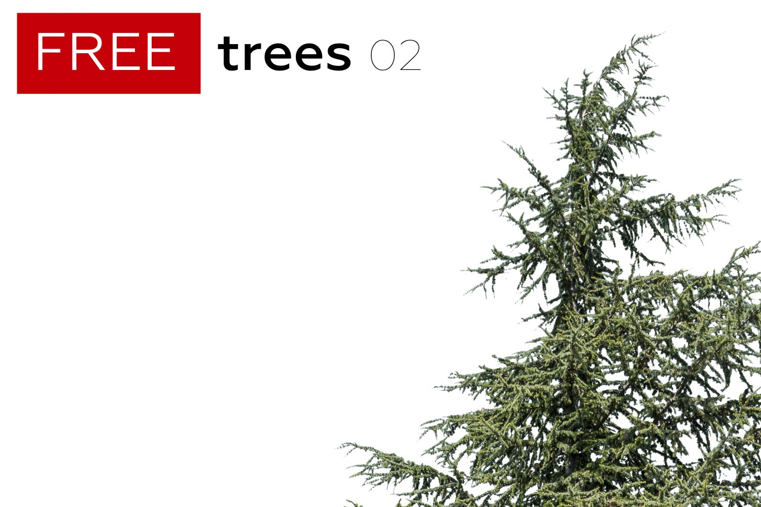 FREE STUFF - 4 Free Trees - Volume 2