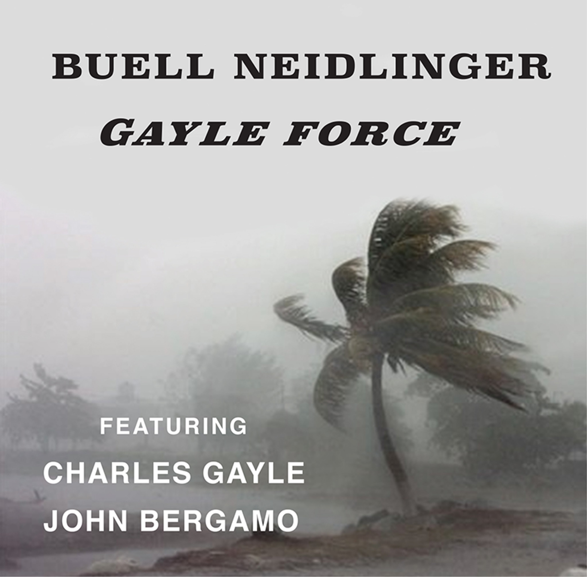 Buell Neidlinger - Gayle Force CD featuring Charles Gayle