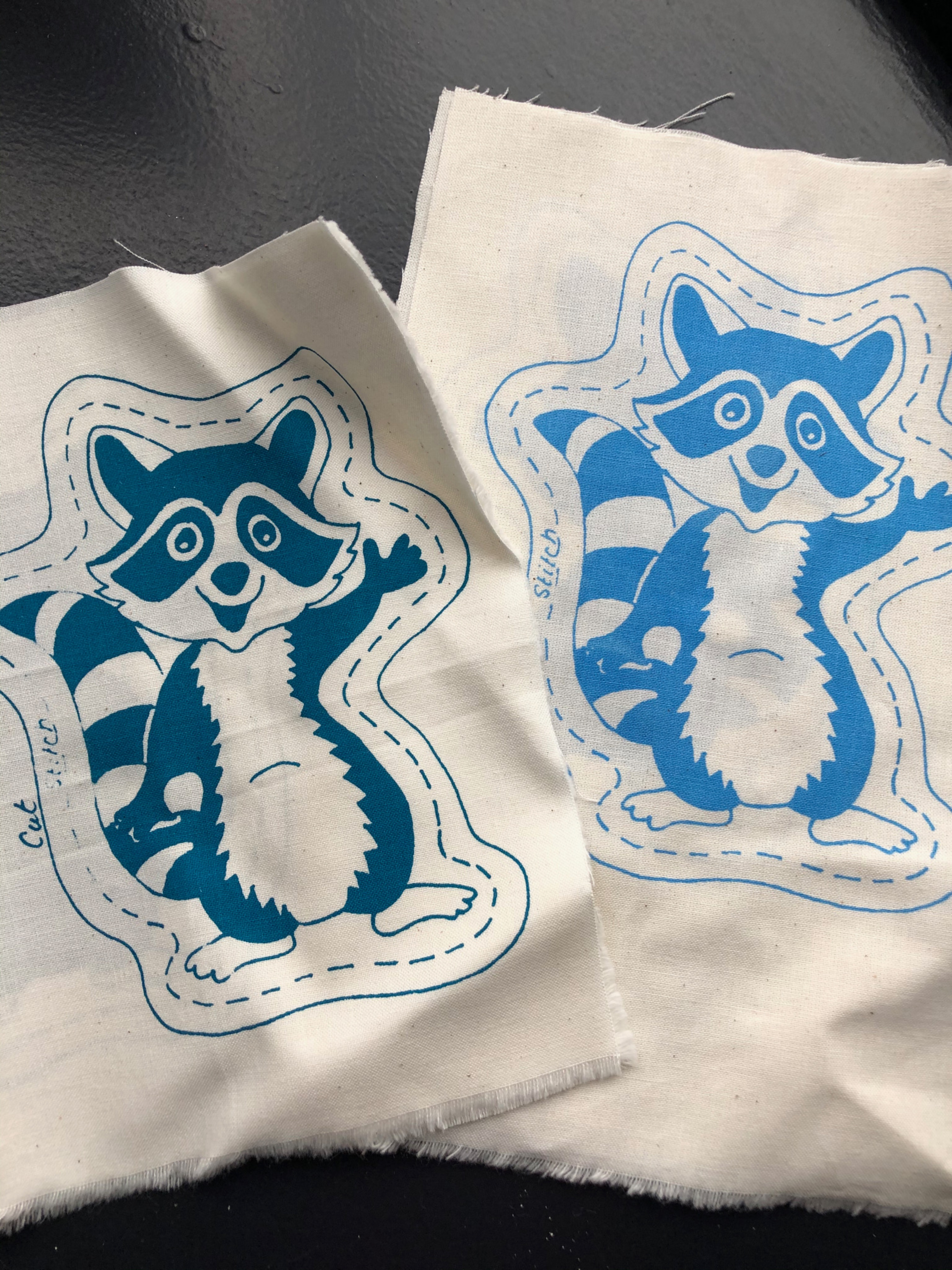 Racoon Kits - Crafting with Alex