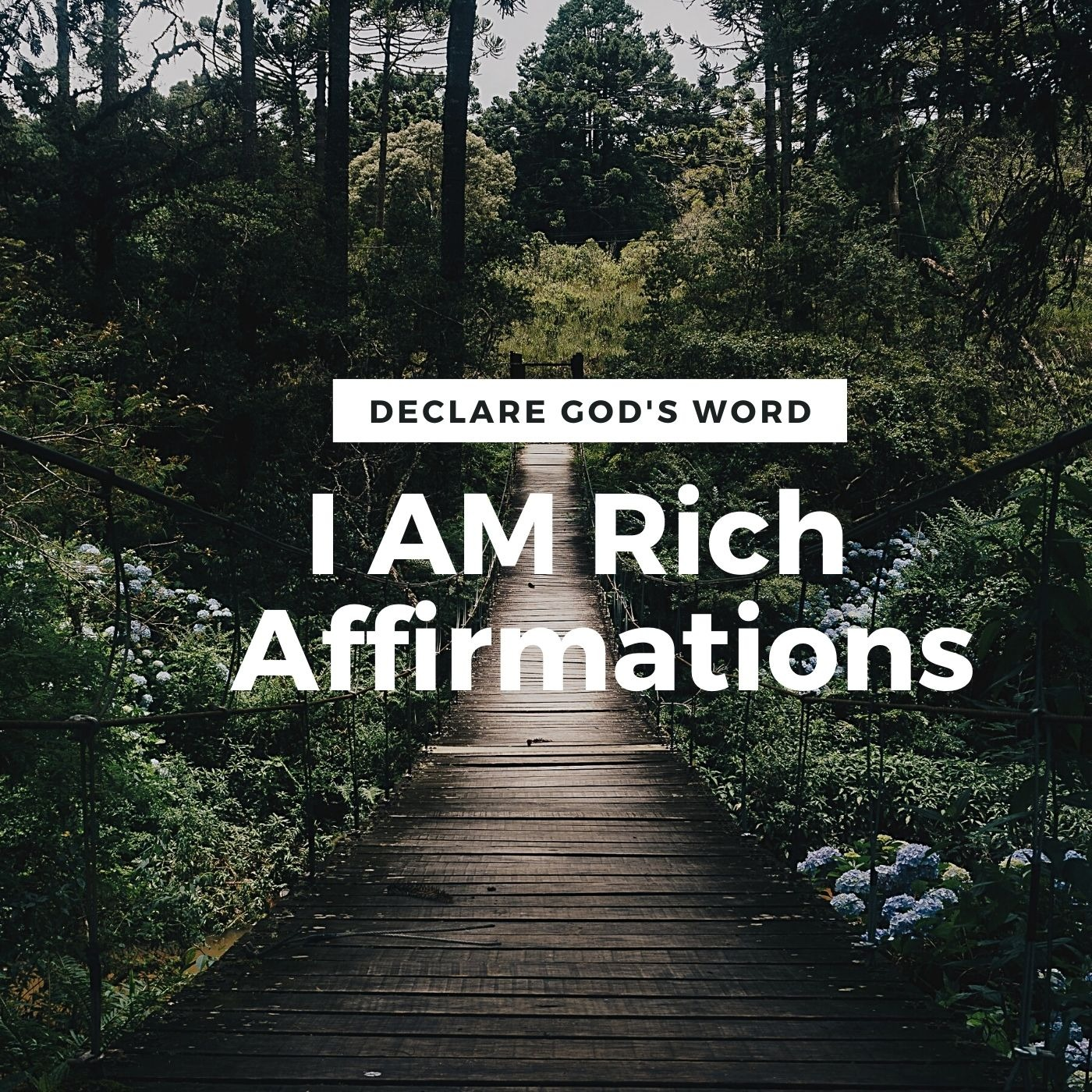 I AM Rich Affirmations - Renew Your Mind (While You Sleep)