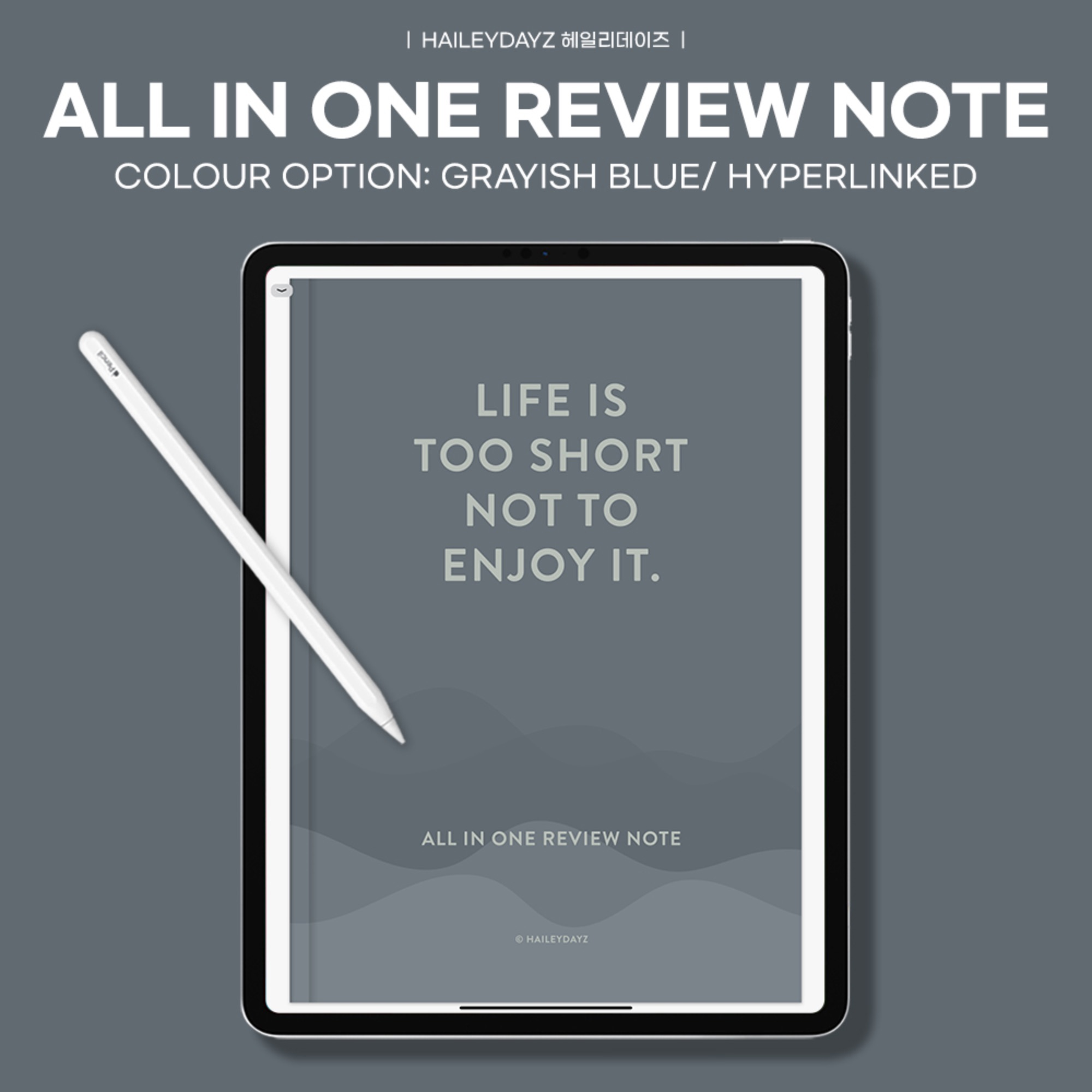 All in one review note (Grayish Blue)