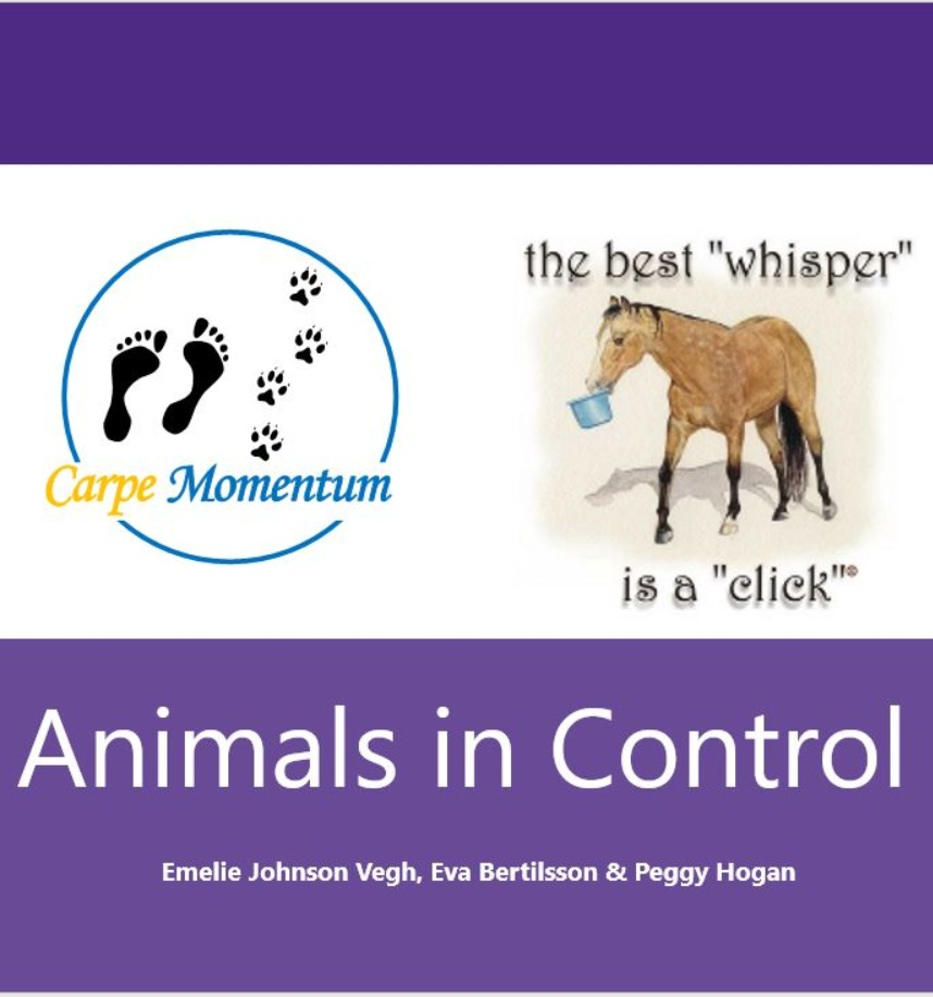 Animals in Control webinar recording