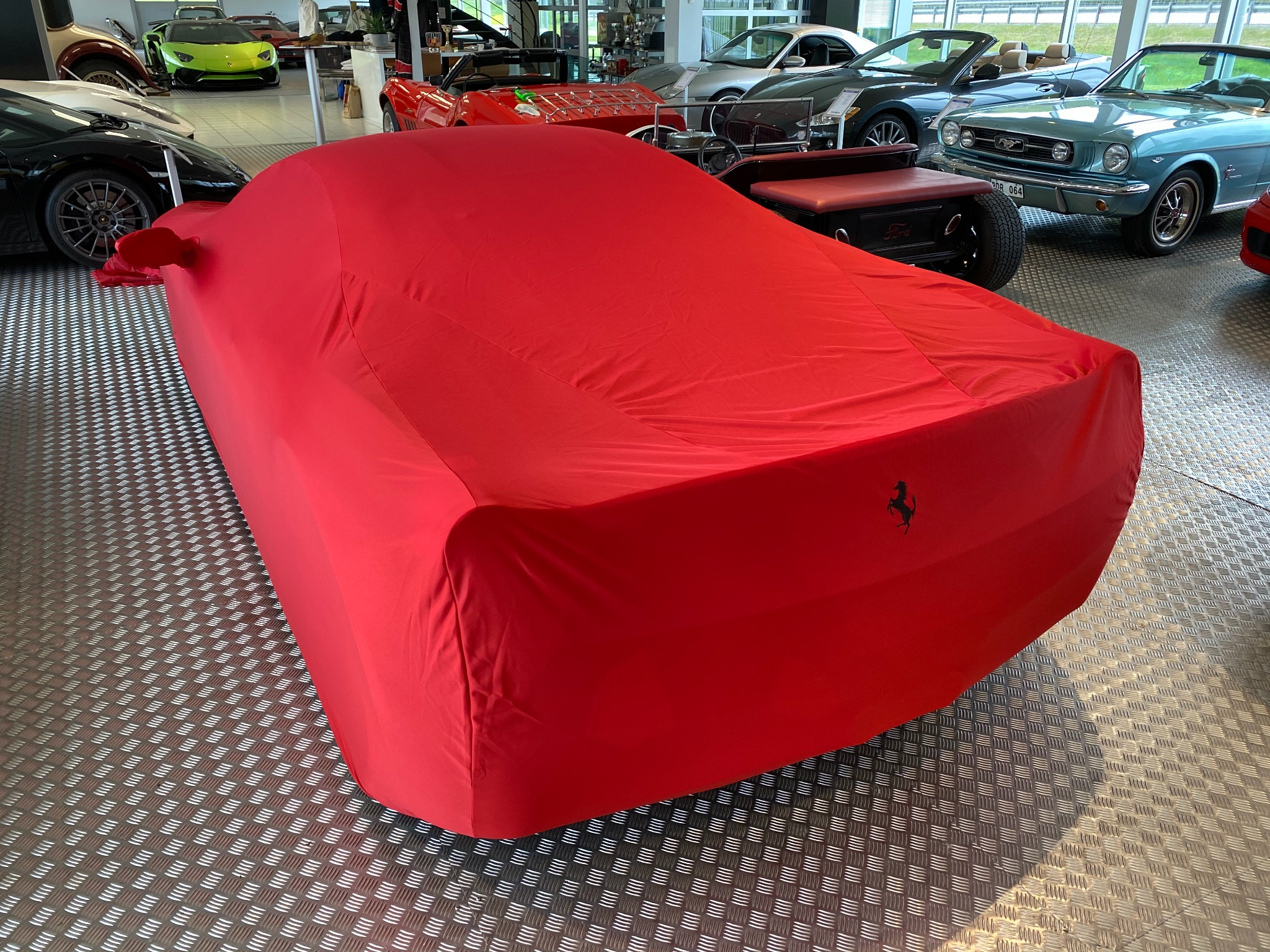 Indoor Car Cover 458
