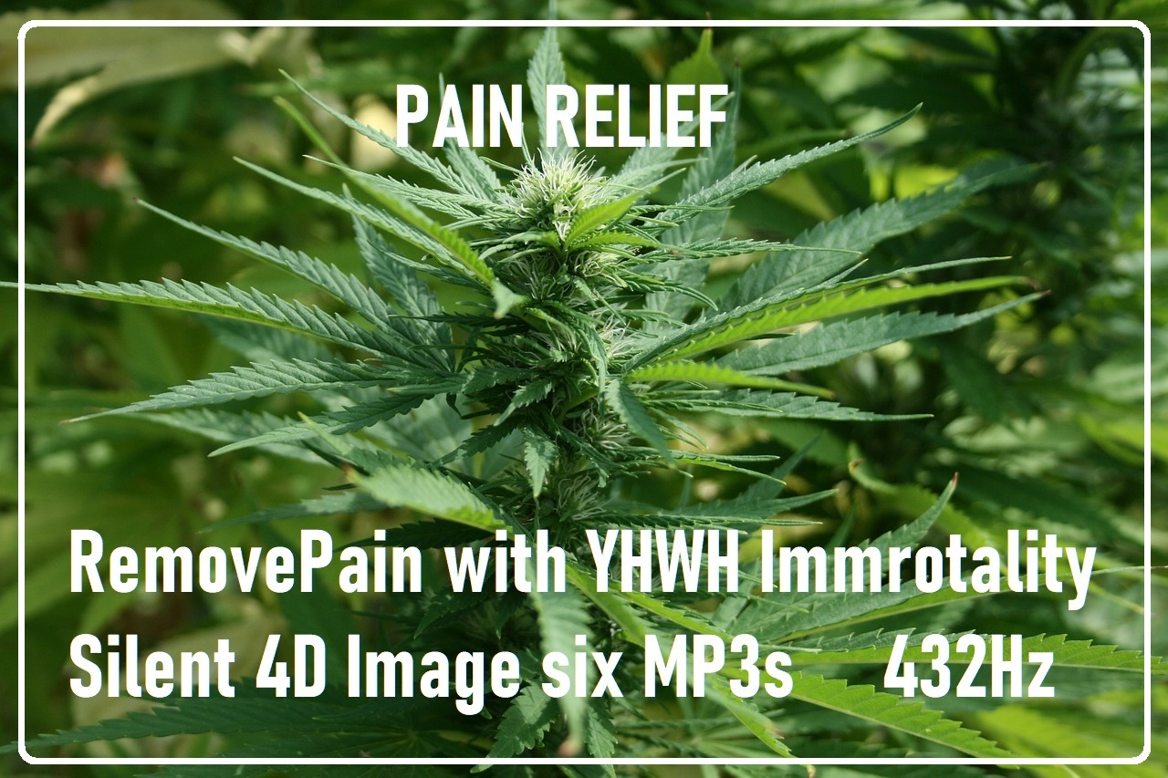 Remove Physical Pain Package - Pain Relief