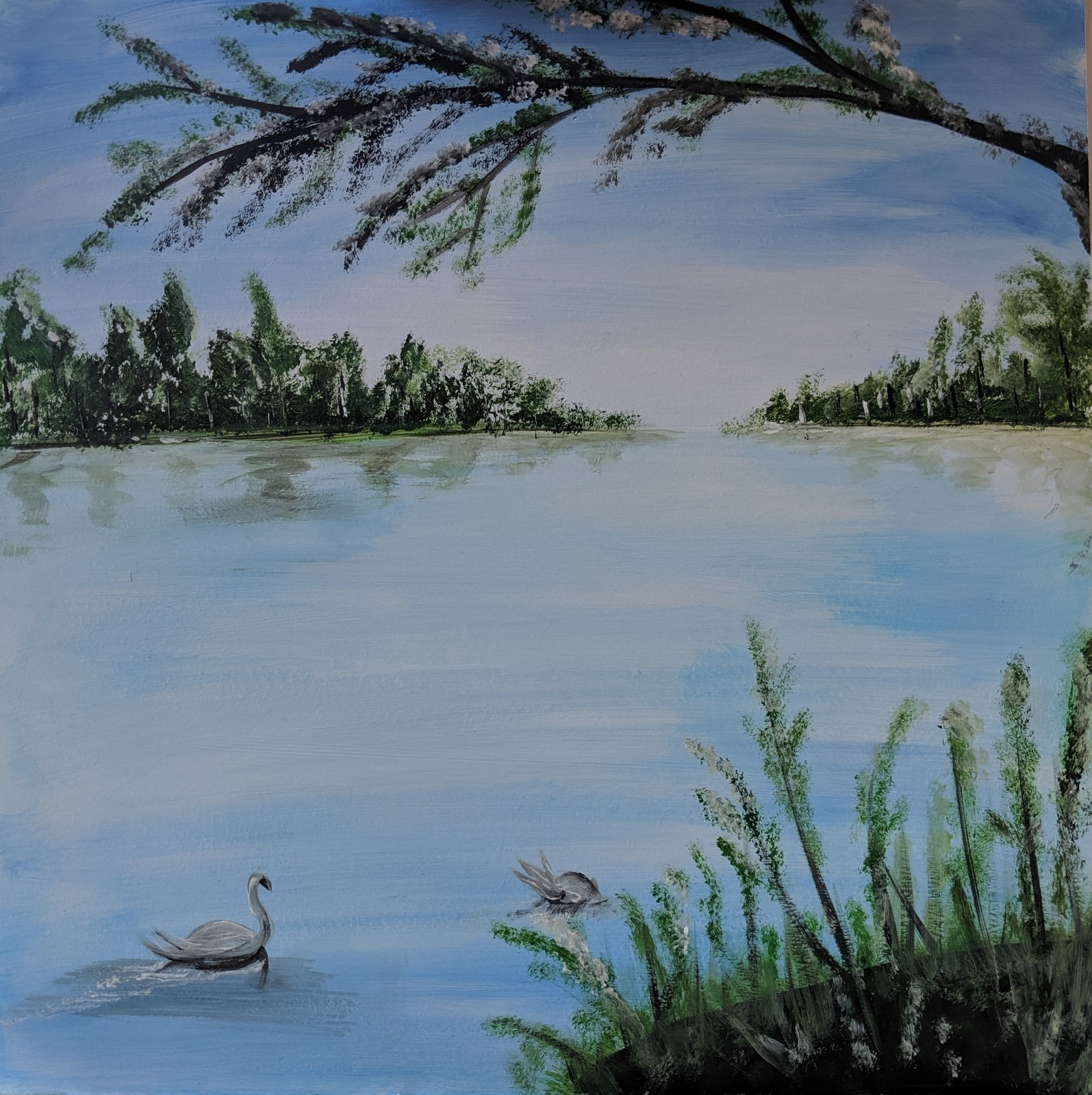 28th September 2020 7pm - Irish Swans - nJoyArt ONLINE Painting Session