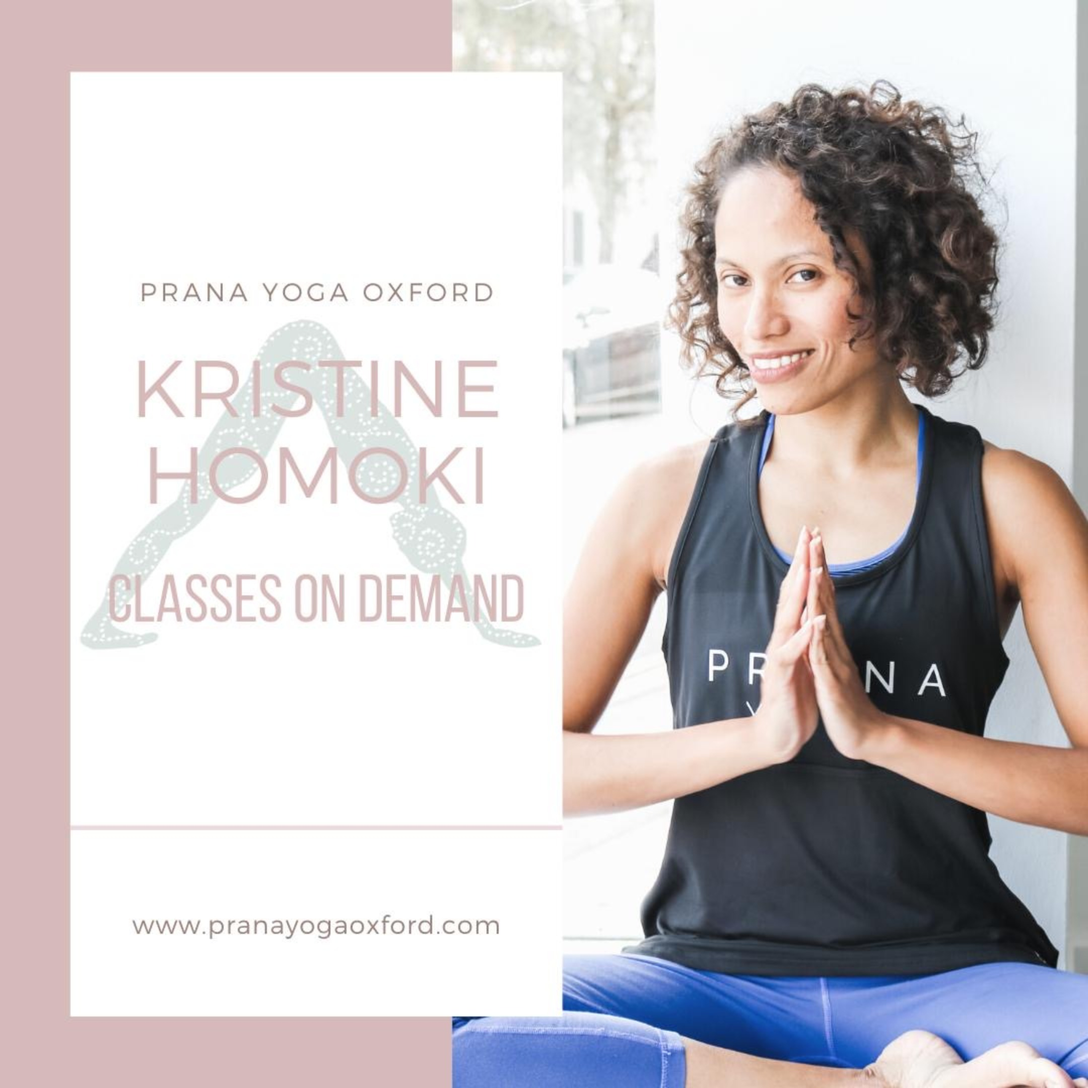 Immune Boosting Flow with Kristine