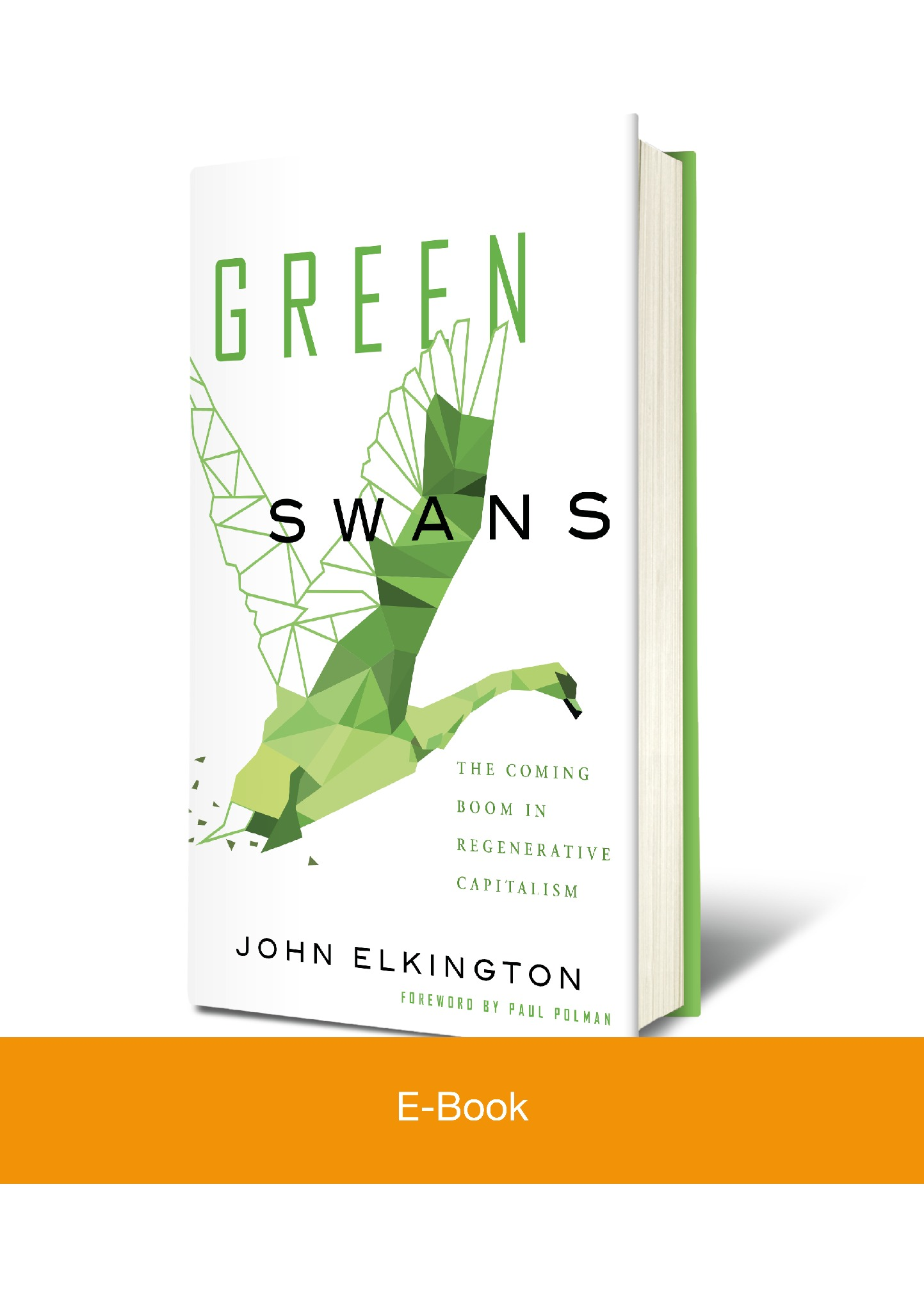 (E-Book) Green Swans: The Coming Boom in Regenerative Capitalism