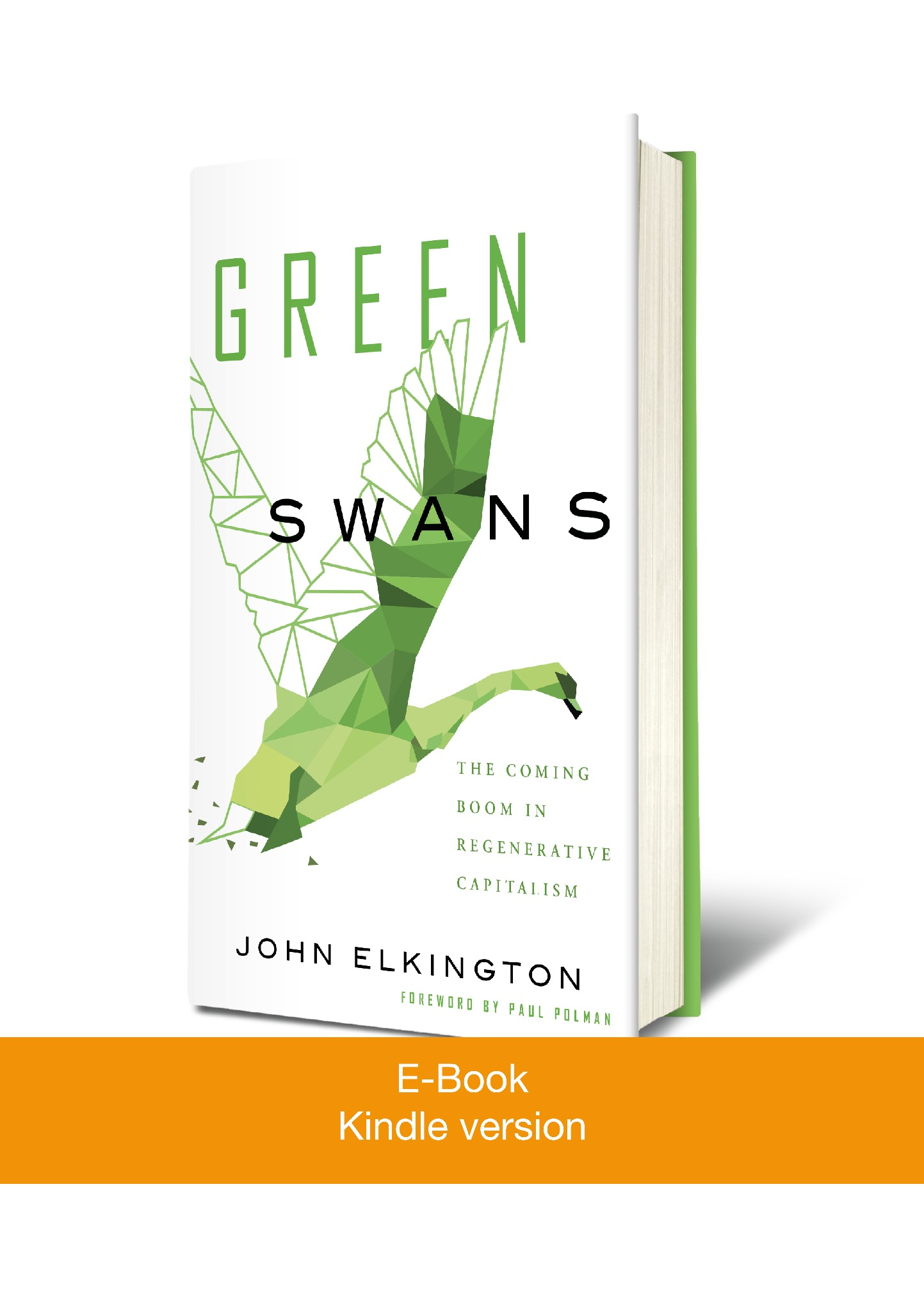(Kindle Version) Green Swans: The Coming Boom in Regenerative Capitalism
