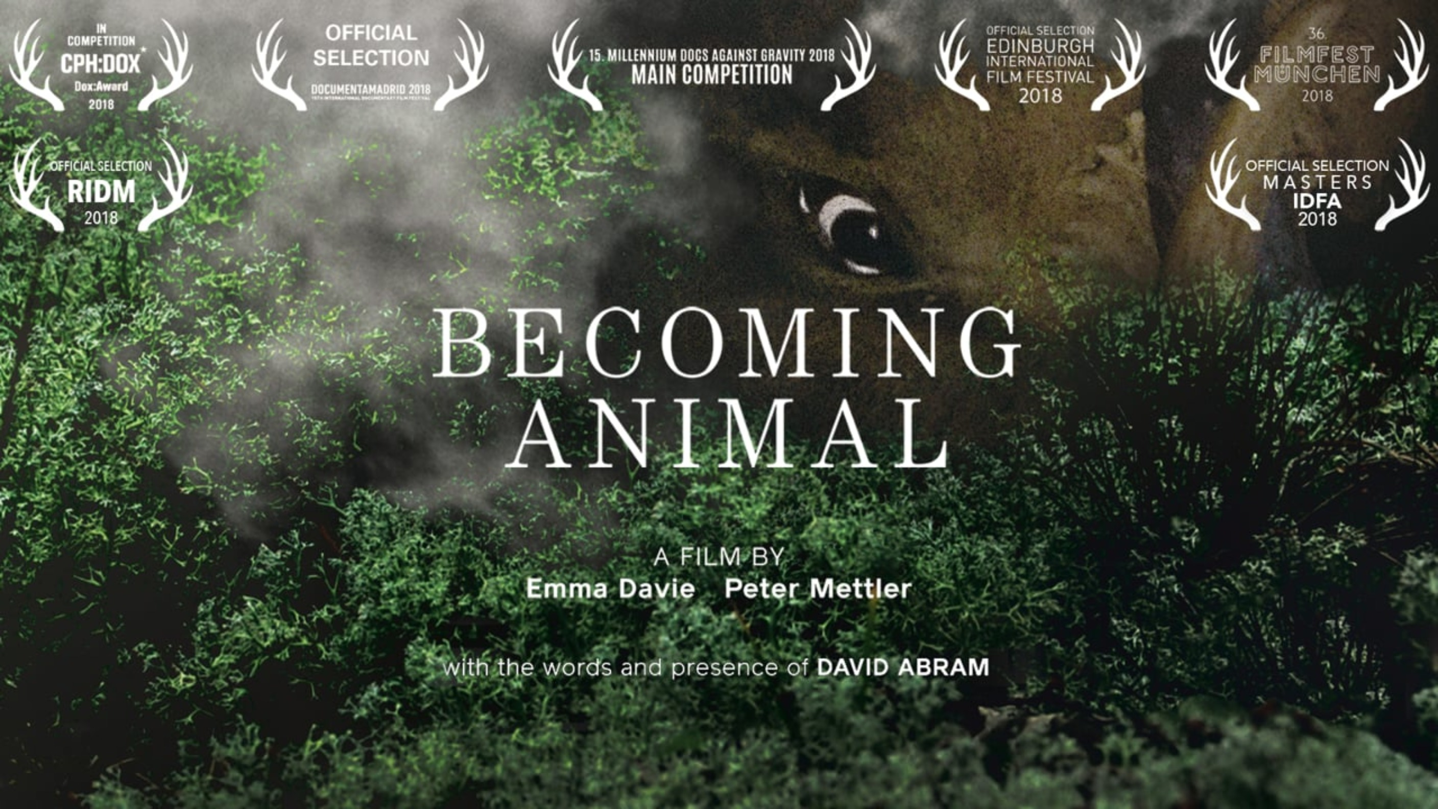 Becoming Animal - Rent