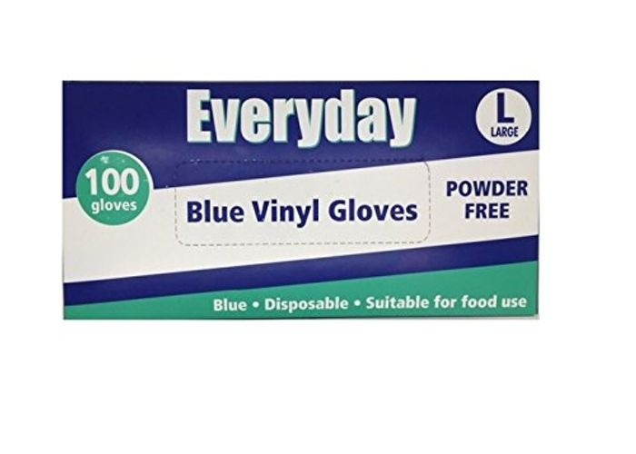 Blue Vinyl Gloves Powder Free - Large 1x100