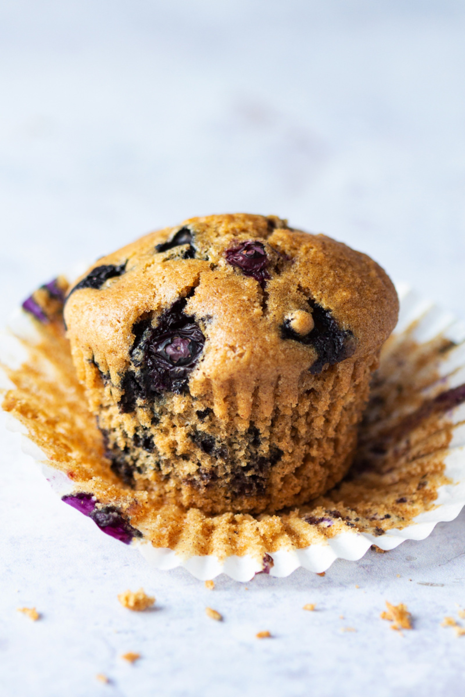 Blueberry Muffins in Tulip Paper 24x90g