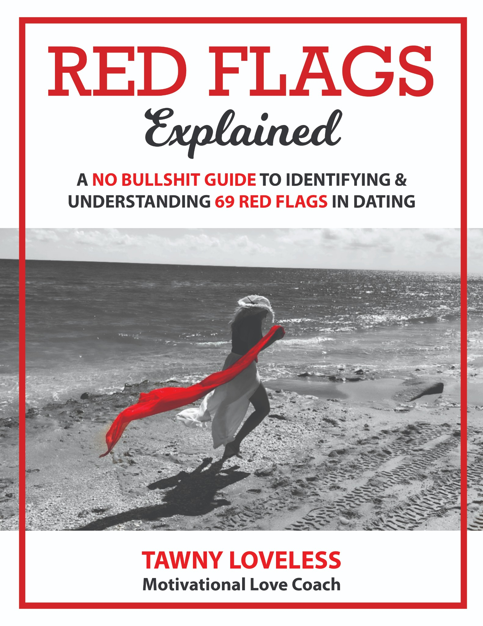 Ebook RED FLAGS Explained