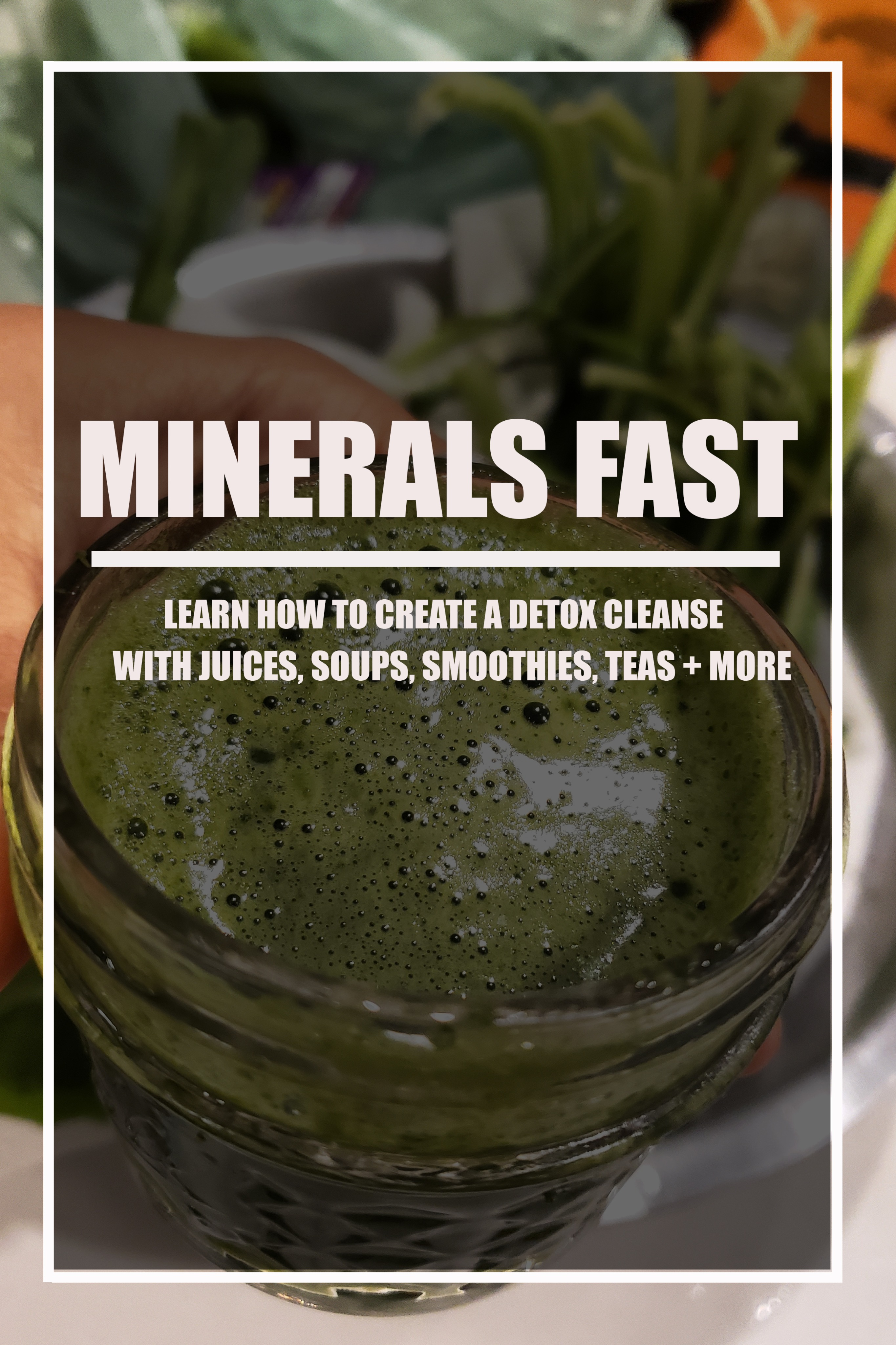 BEYOND VEGAN | MINERALS FAST DIGITAL MINI ECOURSE